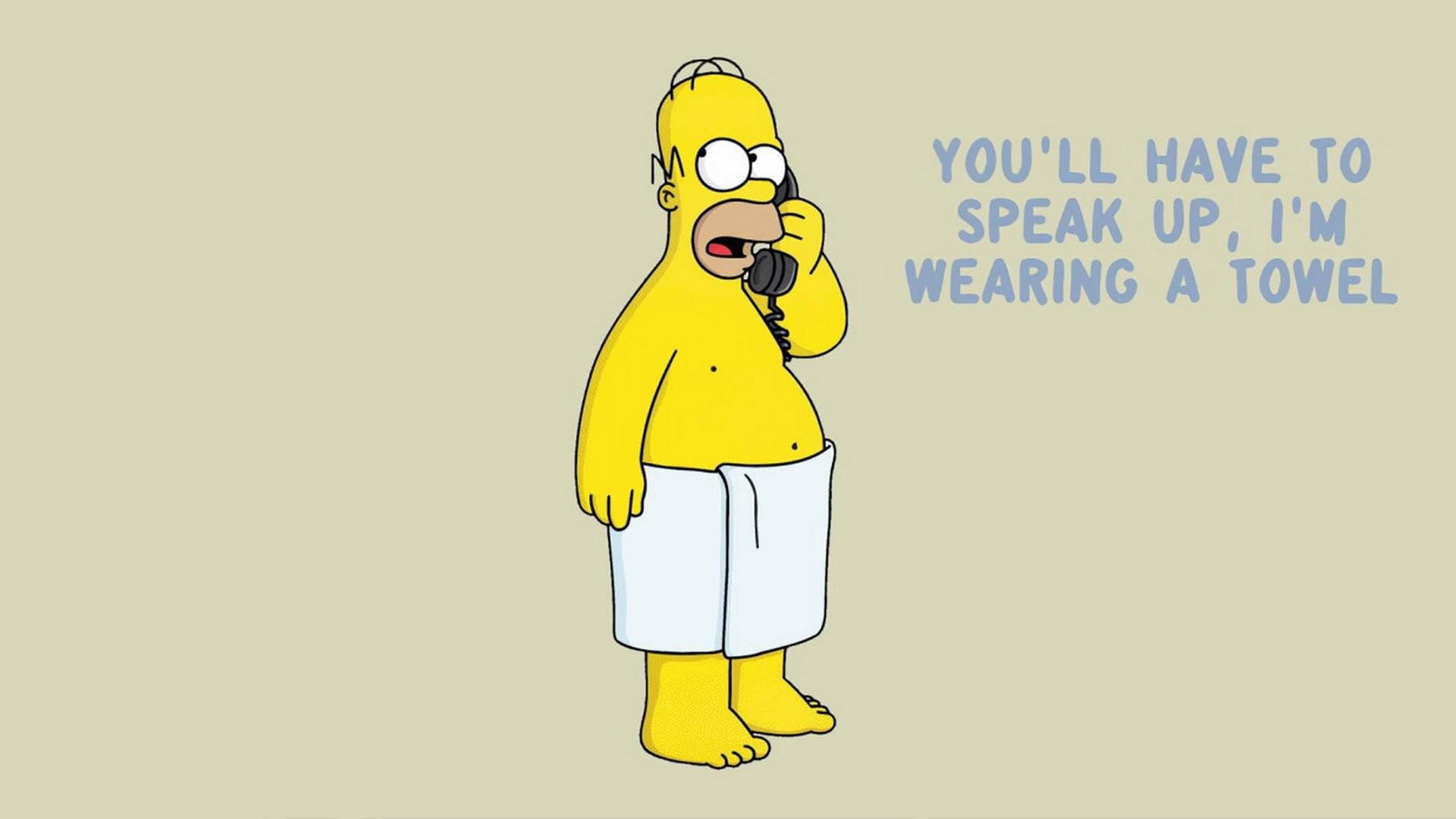 Homer Simpson The Simpsons wallpaper x