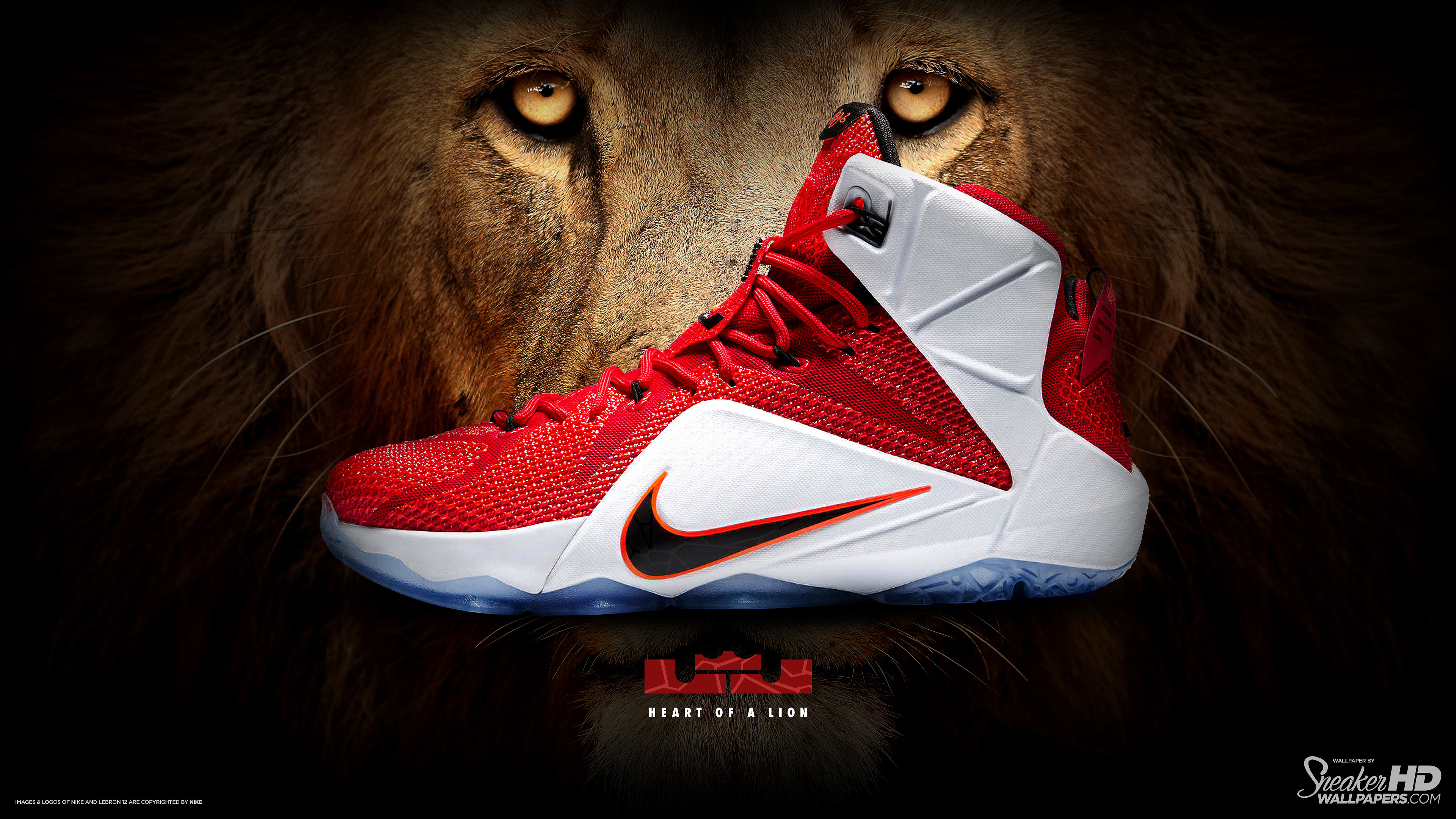 Lebron James Shoes Wallpapers