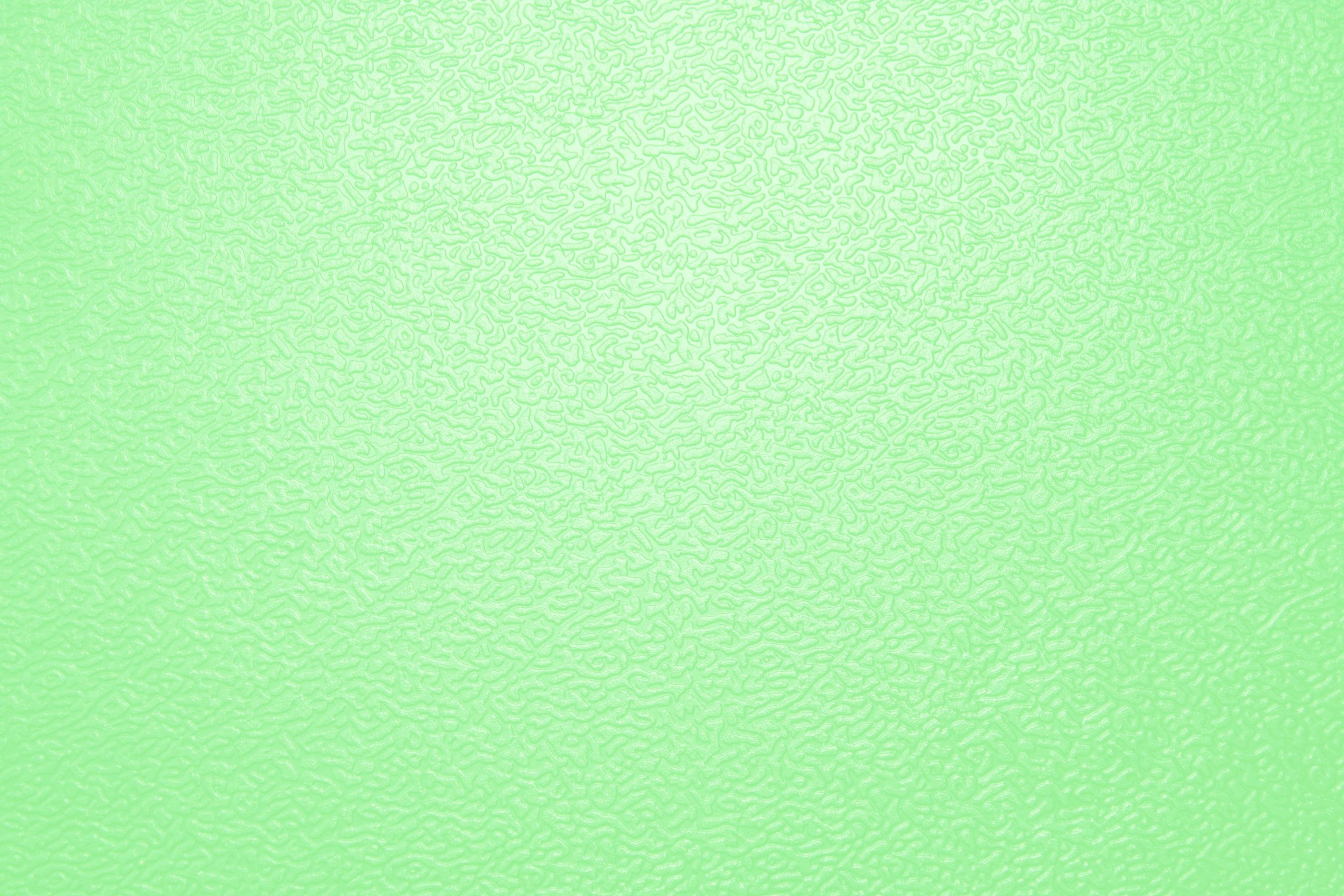 Light Green Background 1 Download Free Beautiful Full HD