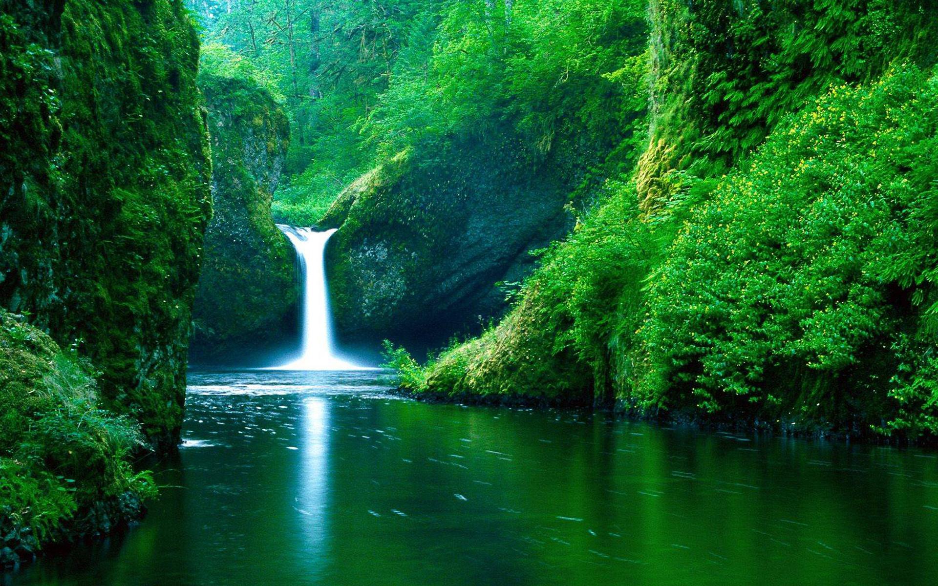 Snoqualmie River In Washington At Autumn Hdr Hd Desktop