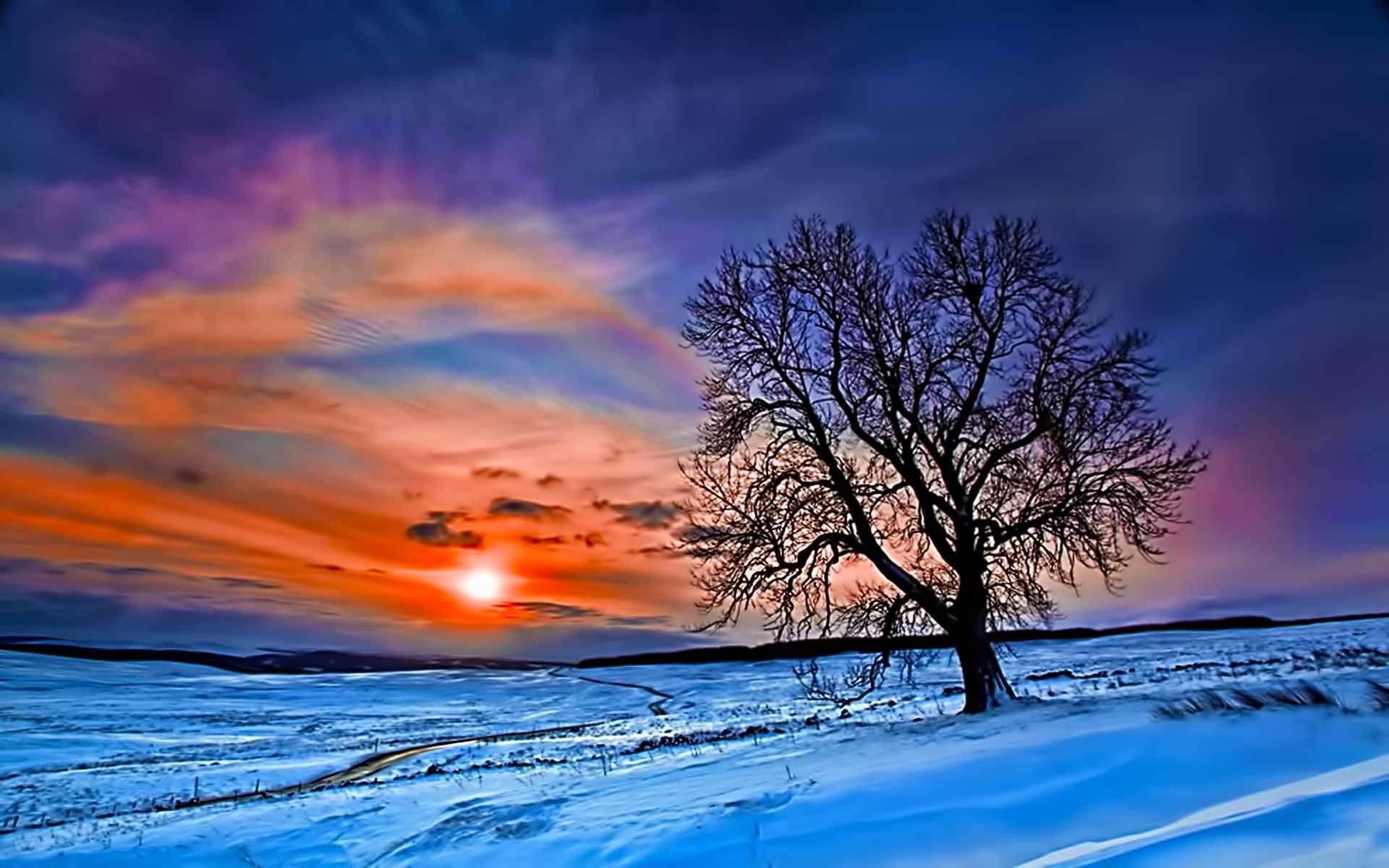 Beautiful Winter Wallpaper ·①