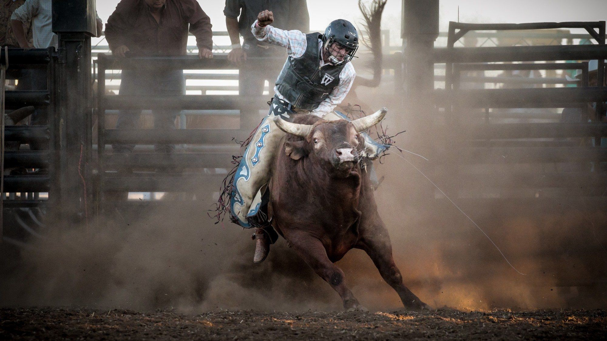 Bull riding backgrounds wallpapertag - Bull riding wallpapers ...