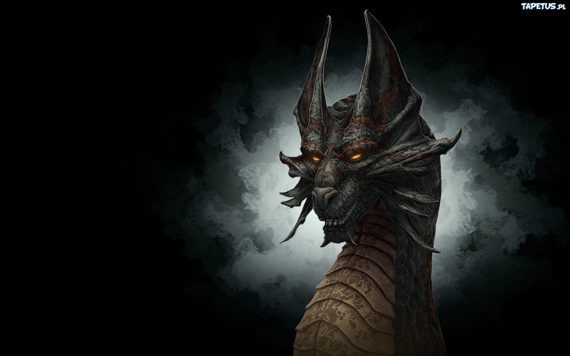3d dragon wallpaper