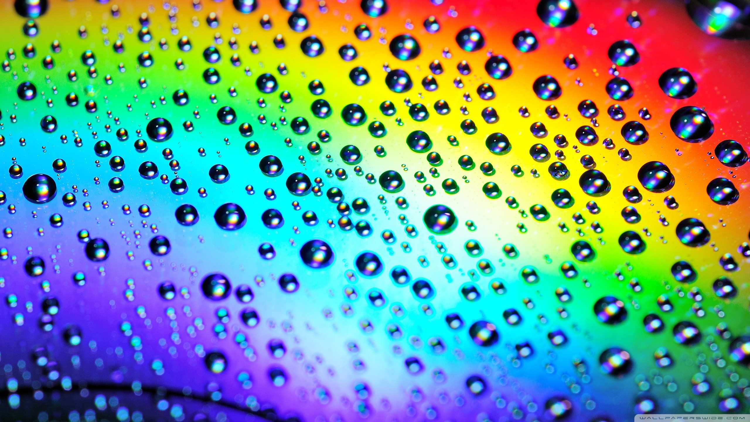 Raindrops Wallpapers on