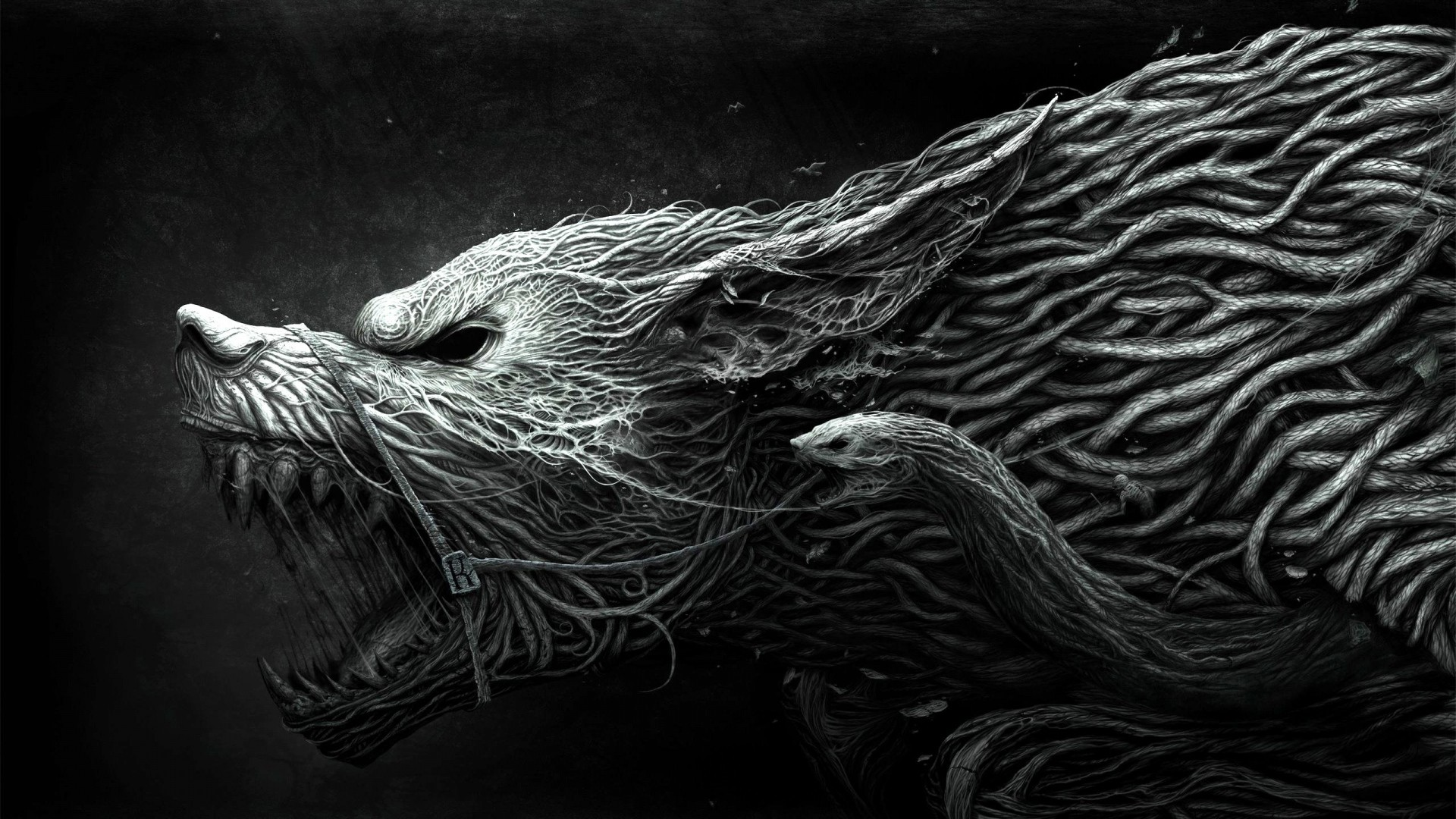 wolf wallpapers hd ·①