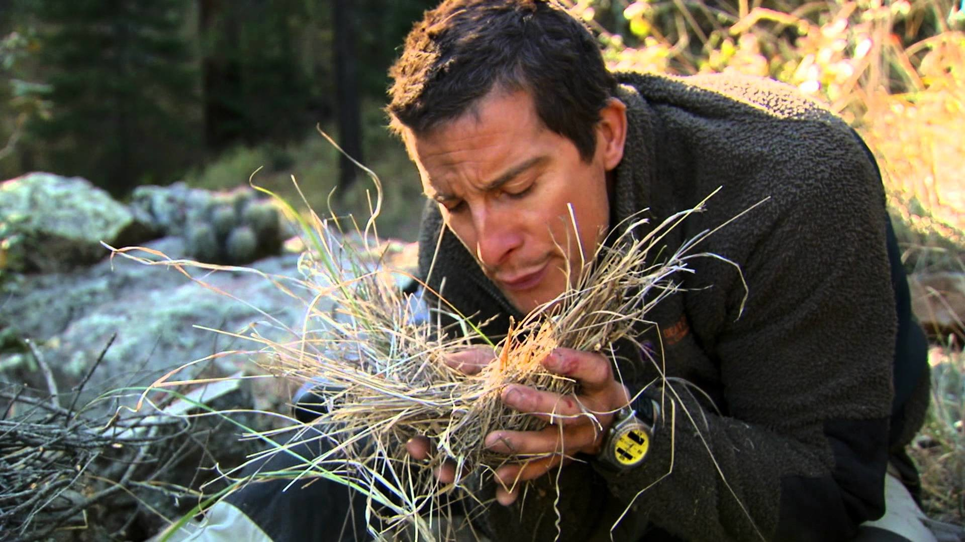 All About Discovery Terminates Relationship With Man Vs Wild Star