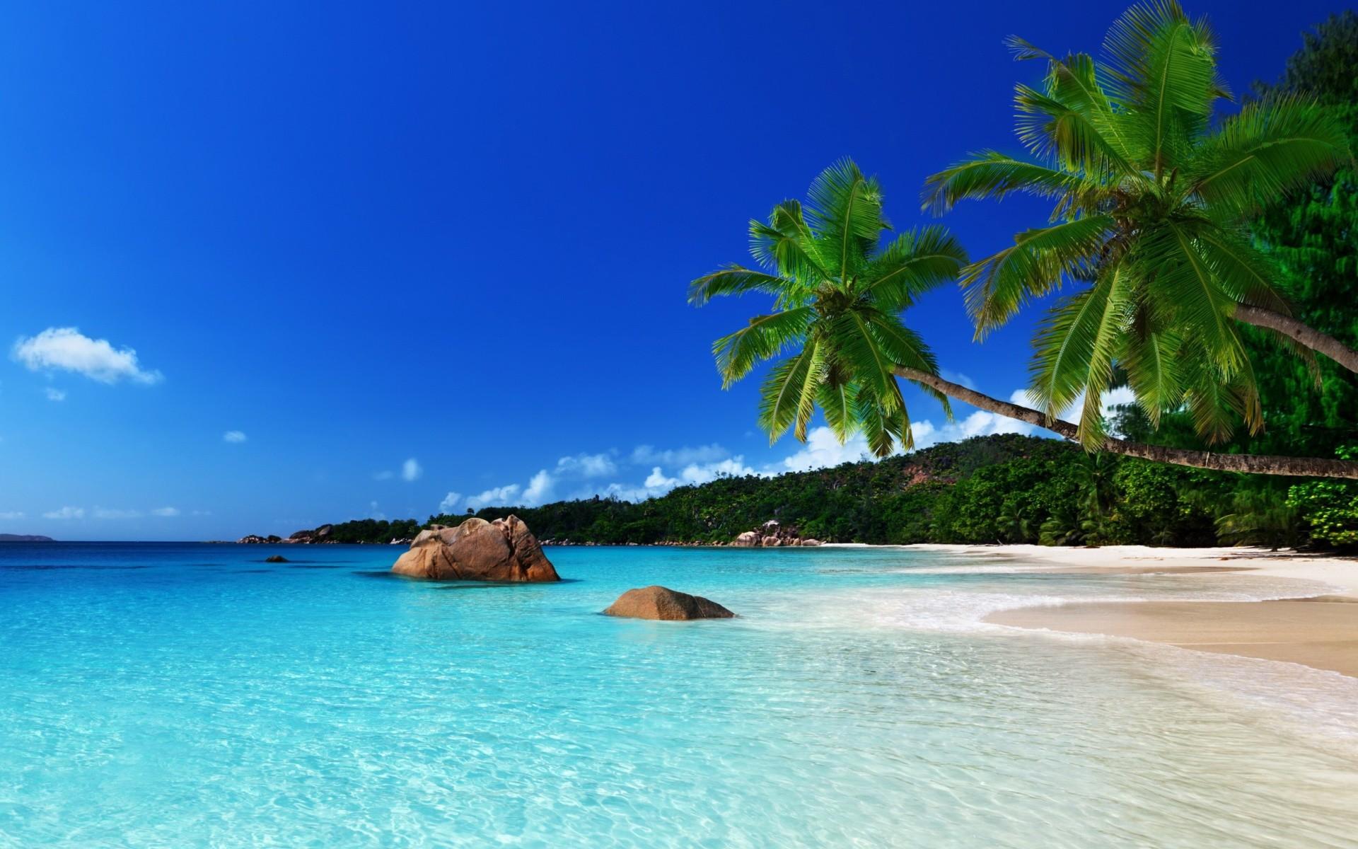 Beach Wallpaper: Jamaica Beach Wallpaper ·① WallpaperTag