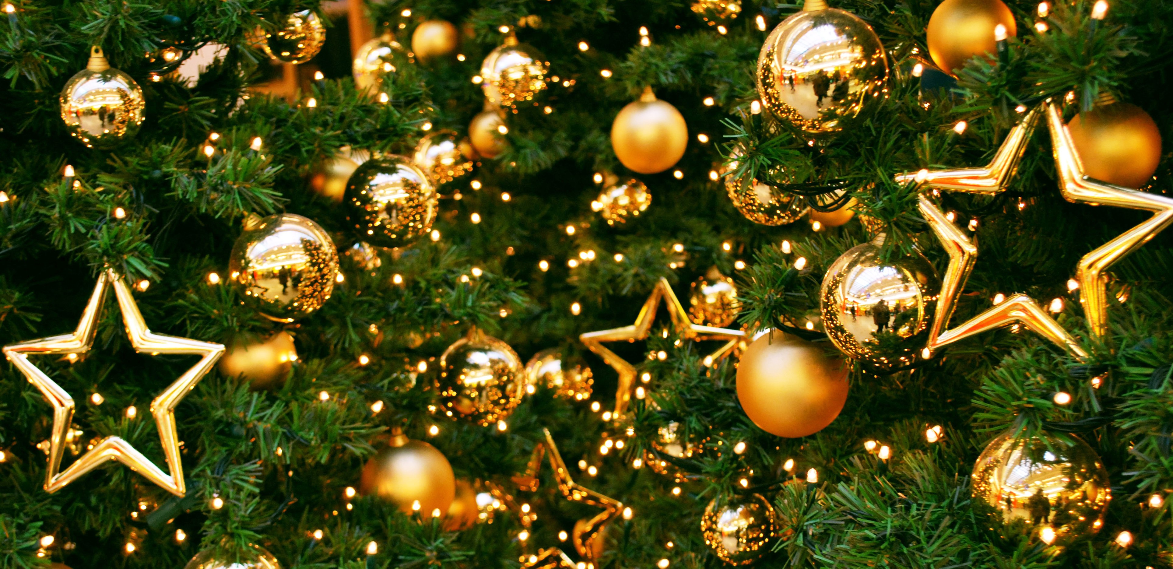 3853x1869 textures new year christmas texture christmas and new year tree texture background