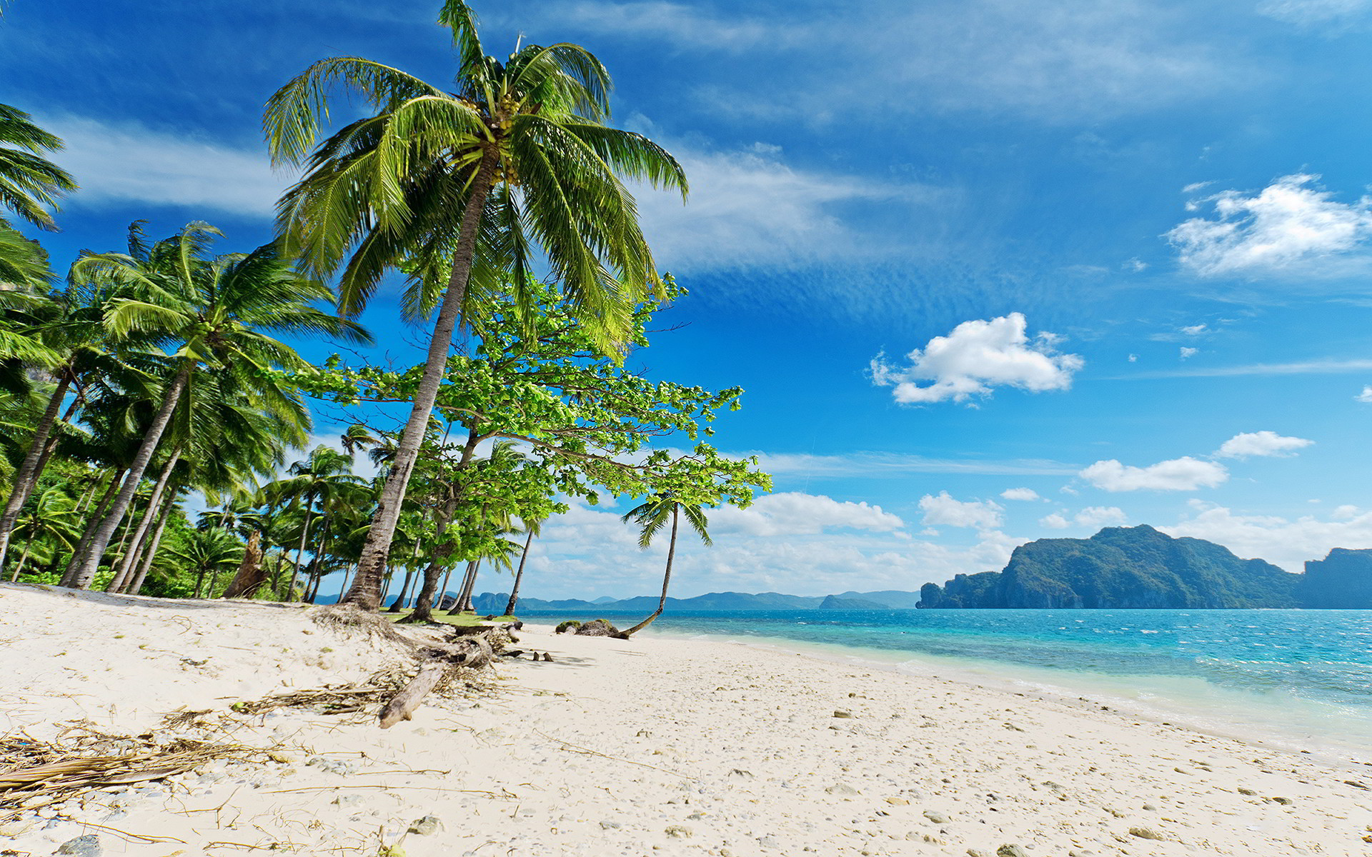 Tropical Beach Desktop Wallpaper ·① WallpaperTag