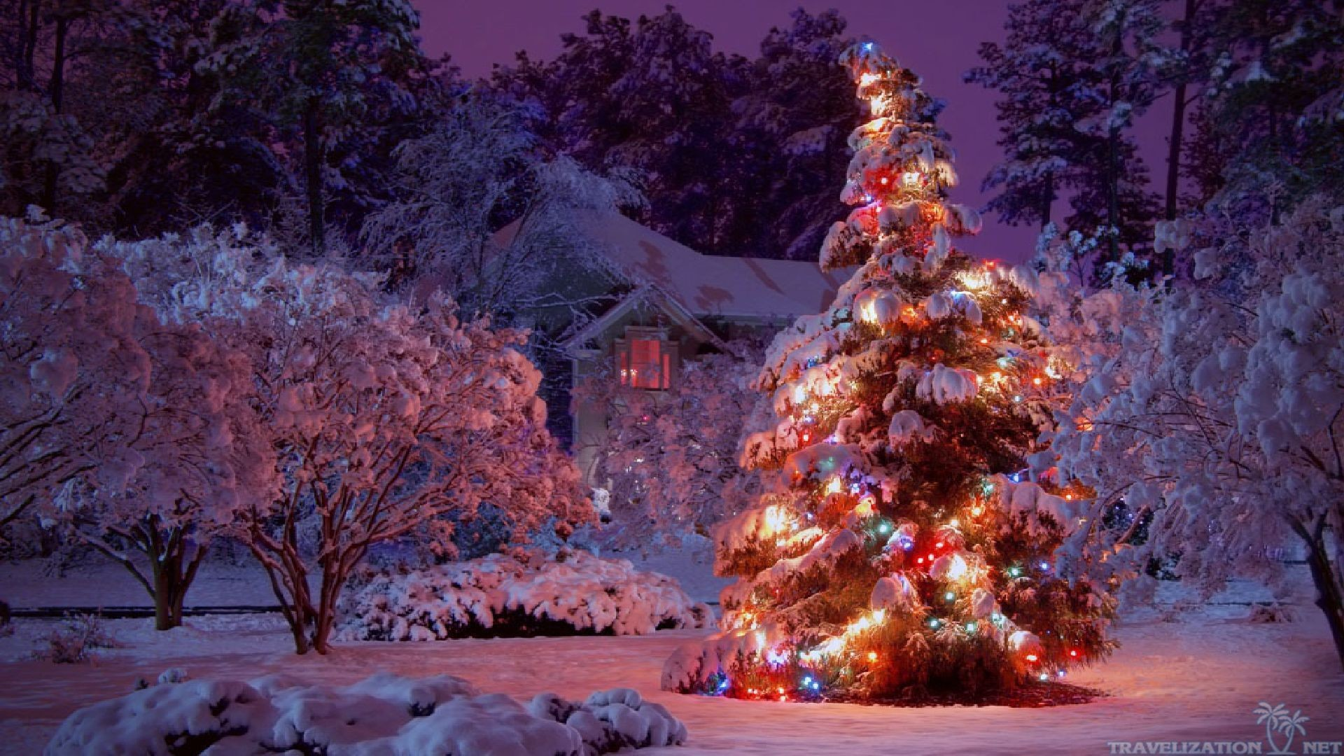 Winter Christmas Backgrounds ·①