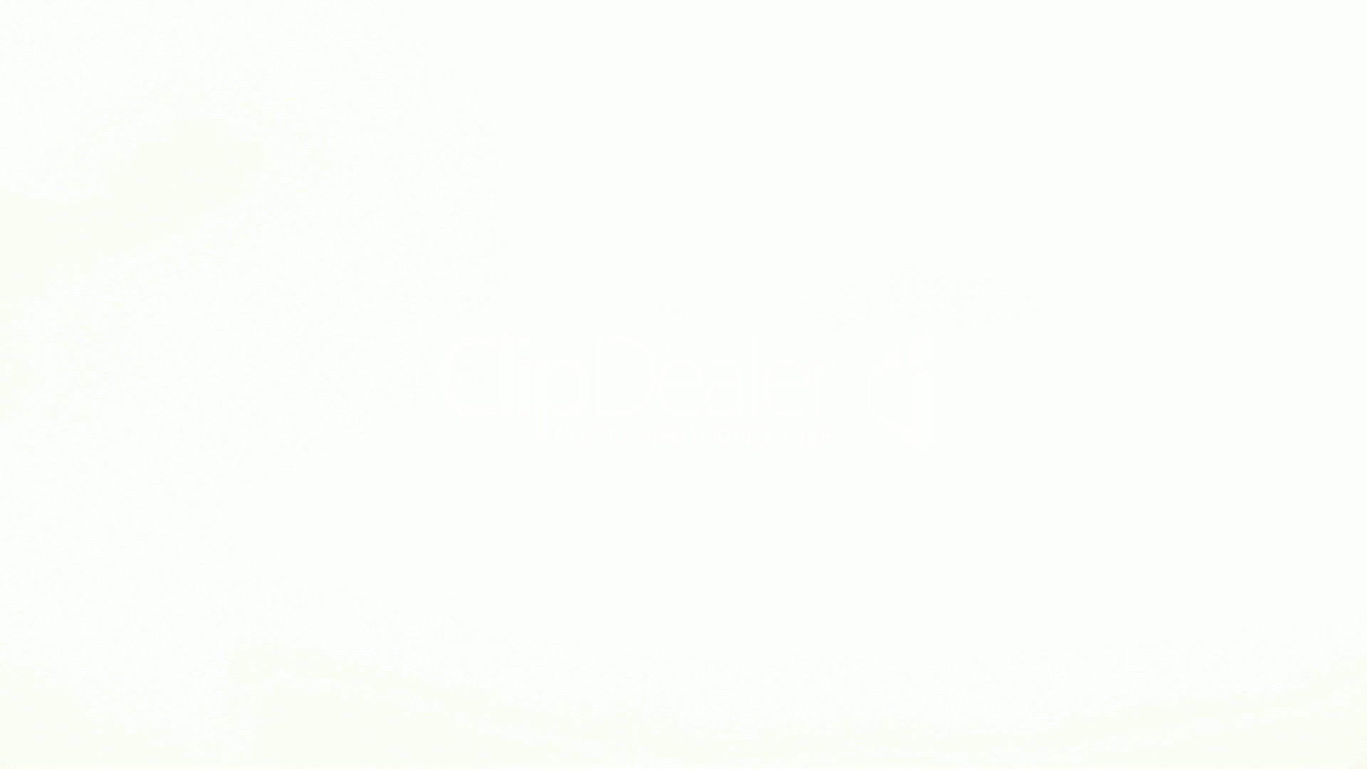 Background White ·① Download free beautiful wallpapers for ...