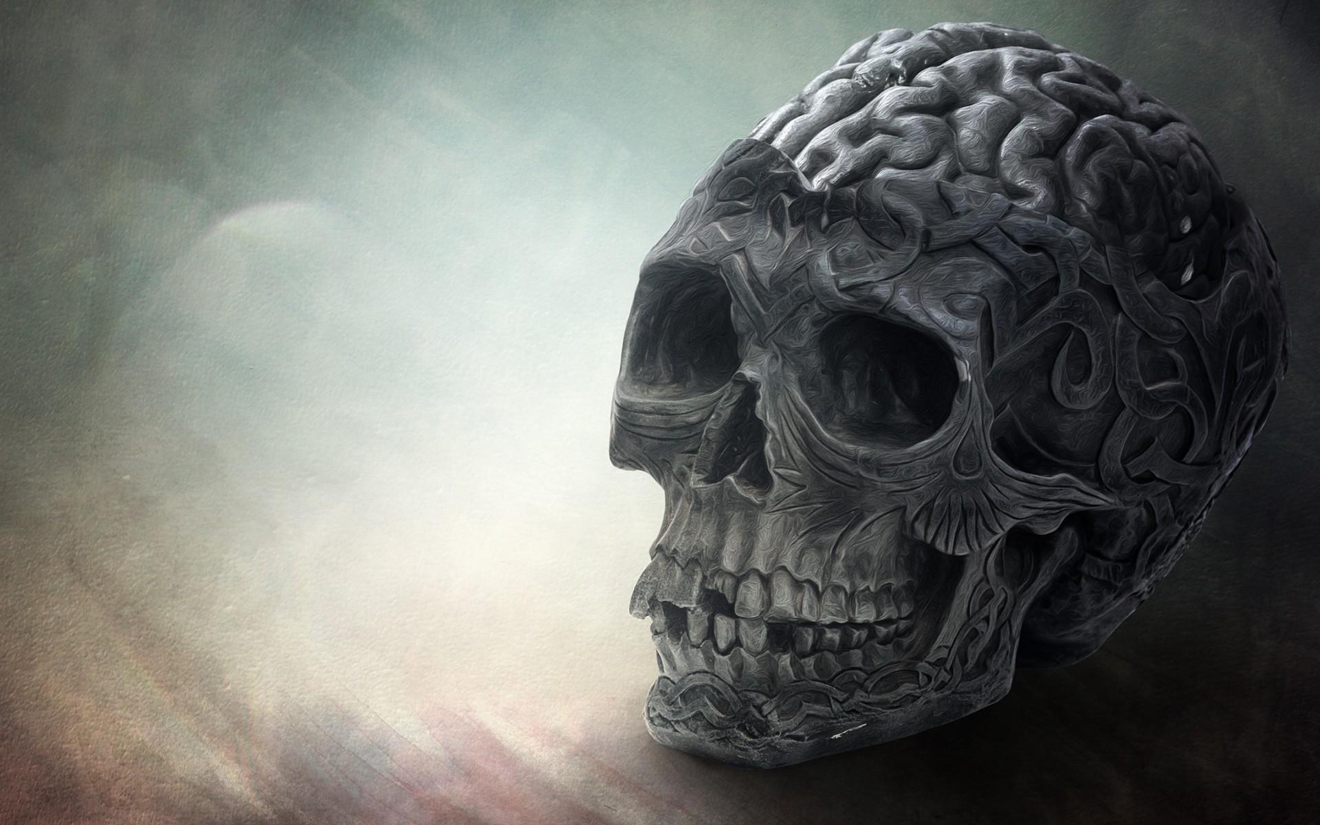Brain Wallpaper 1 Download Free Beautiful Backgrounds For Desktop