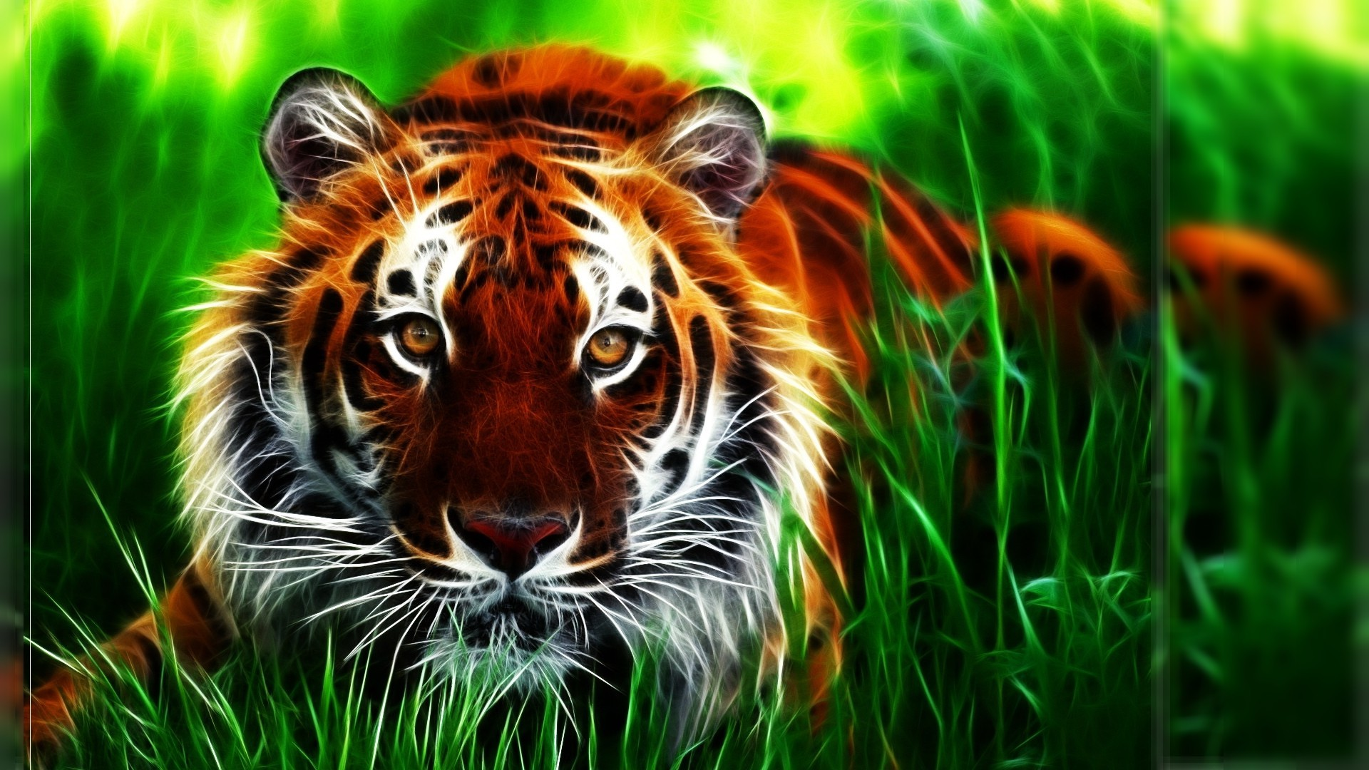 tiger background ·① download free beautiful full hd wallpapers for