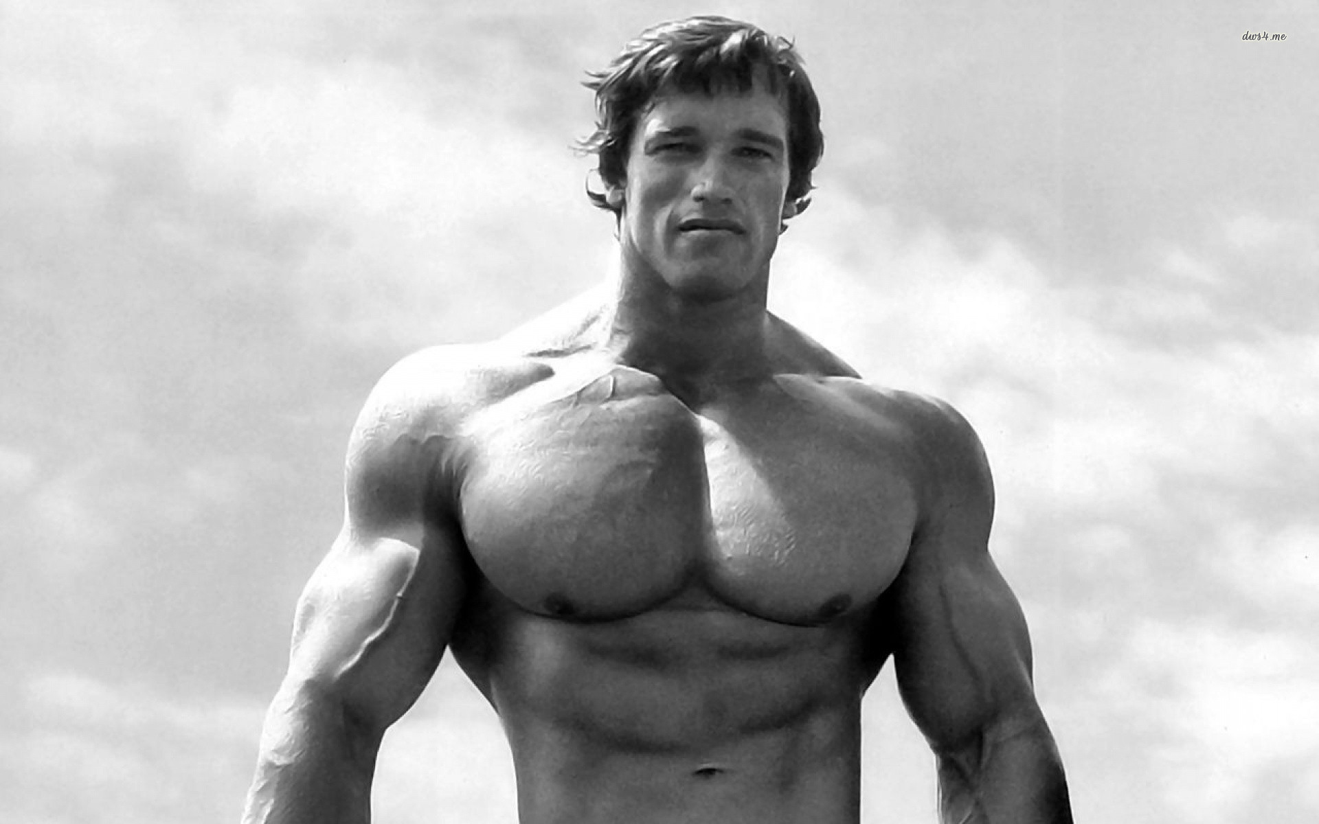 arnold schwarzenegger bodybuilding wallpapers posters and pictures