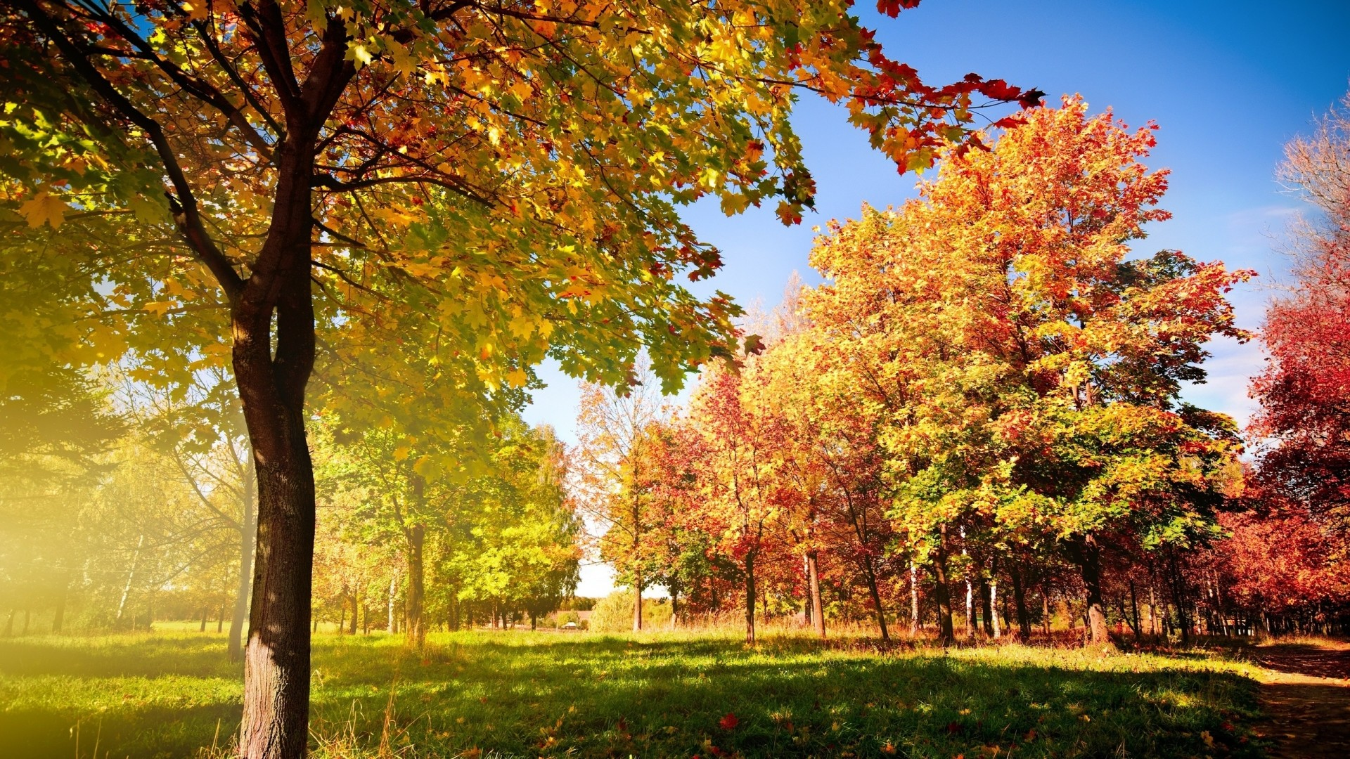Colorful nature wallpapers - Nature wallpaper 2560x1600 ...