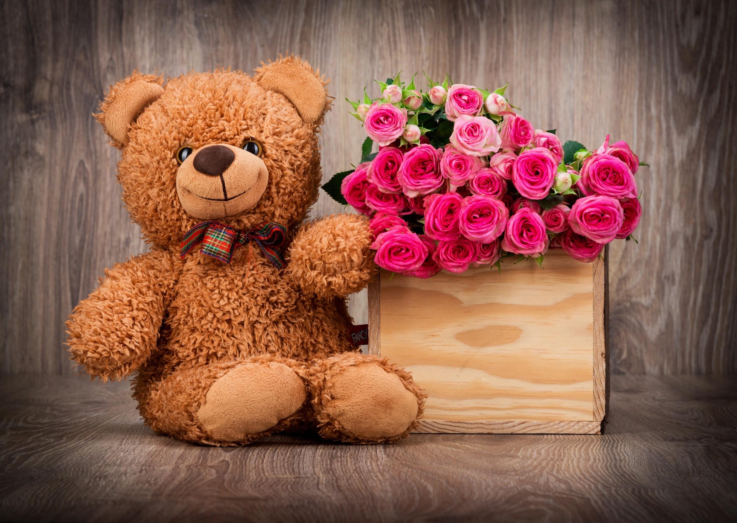 cute teddy bear wallpapers ·①