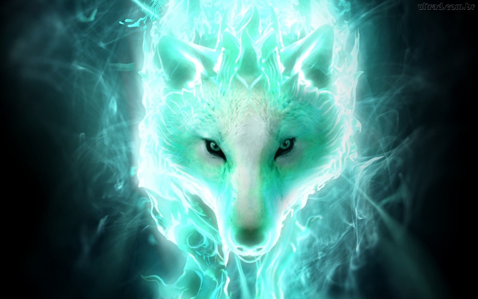 Fantasy Wolf Wallpaper ① Wallpapertag