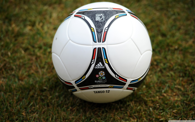 мяч спорт EURO 2016 adidas  № 3918546  скачать