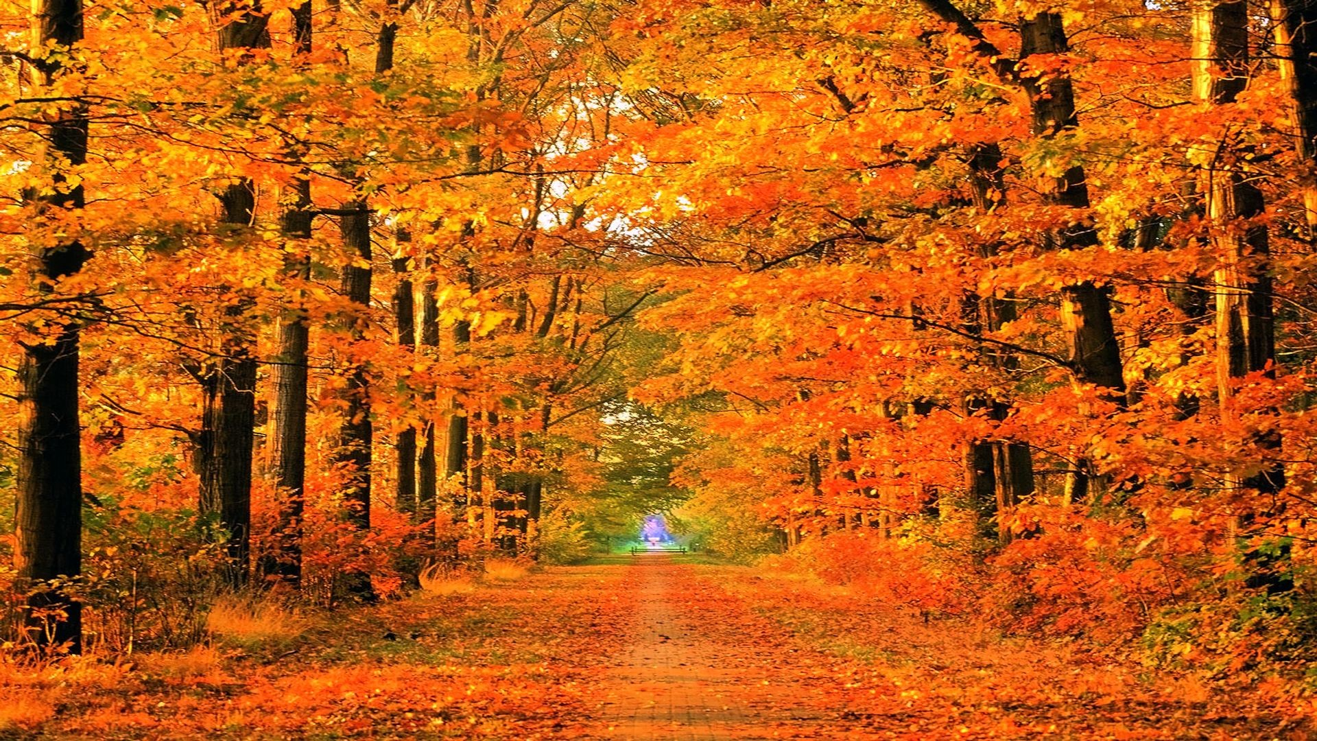 New England Fall Wallpaper ·① WallpaperTag