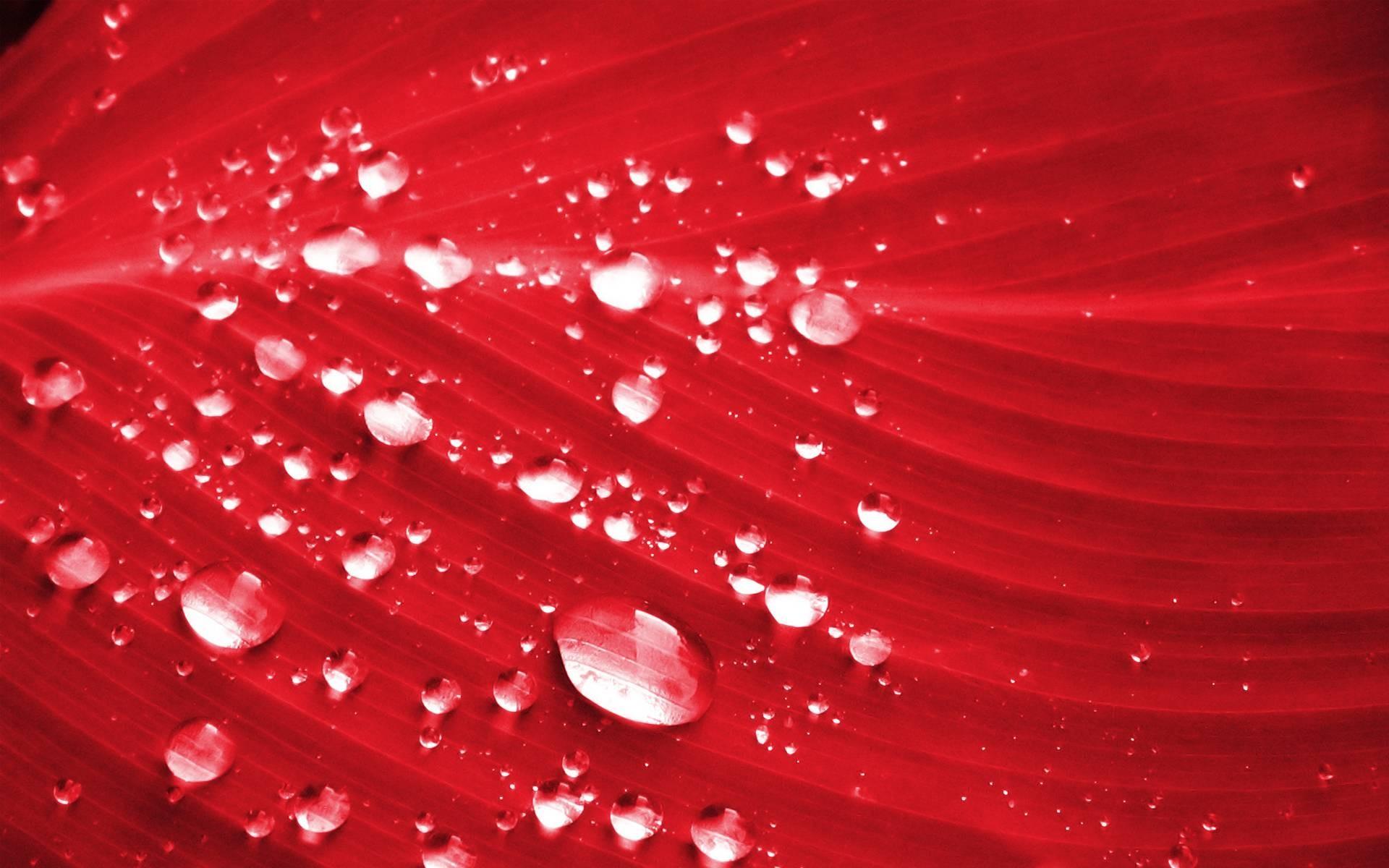 Red wallpaper hd download free backgrounds for desktop - Water wallpaper hd download ...