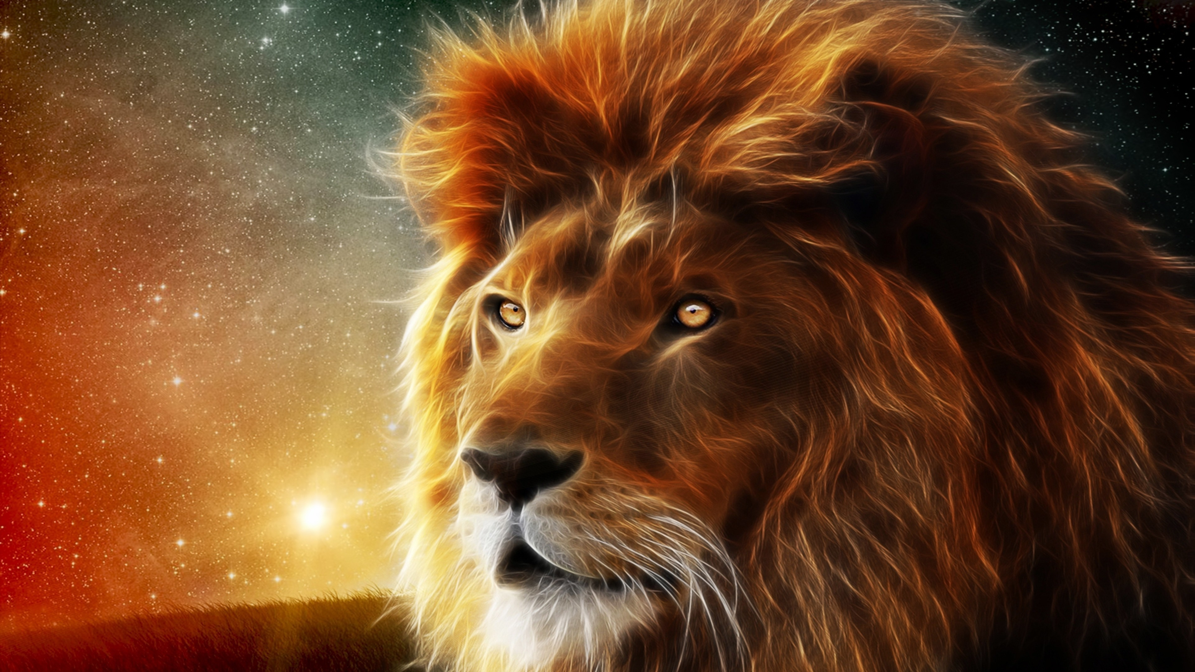 156728 lion wallpaper hd 3840x2160 for phone