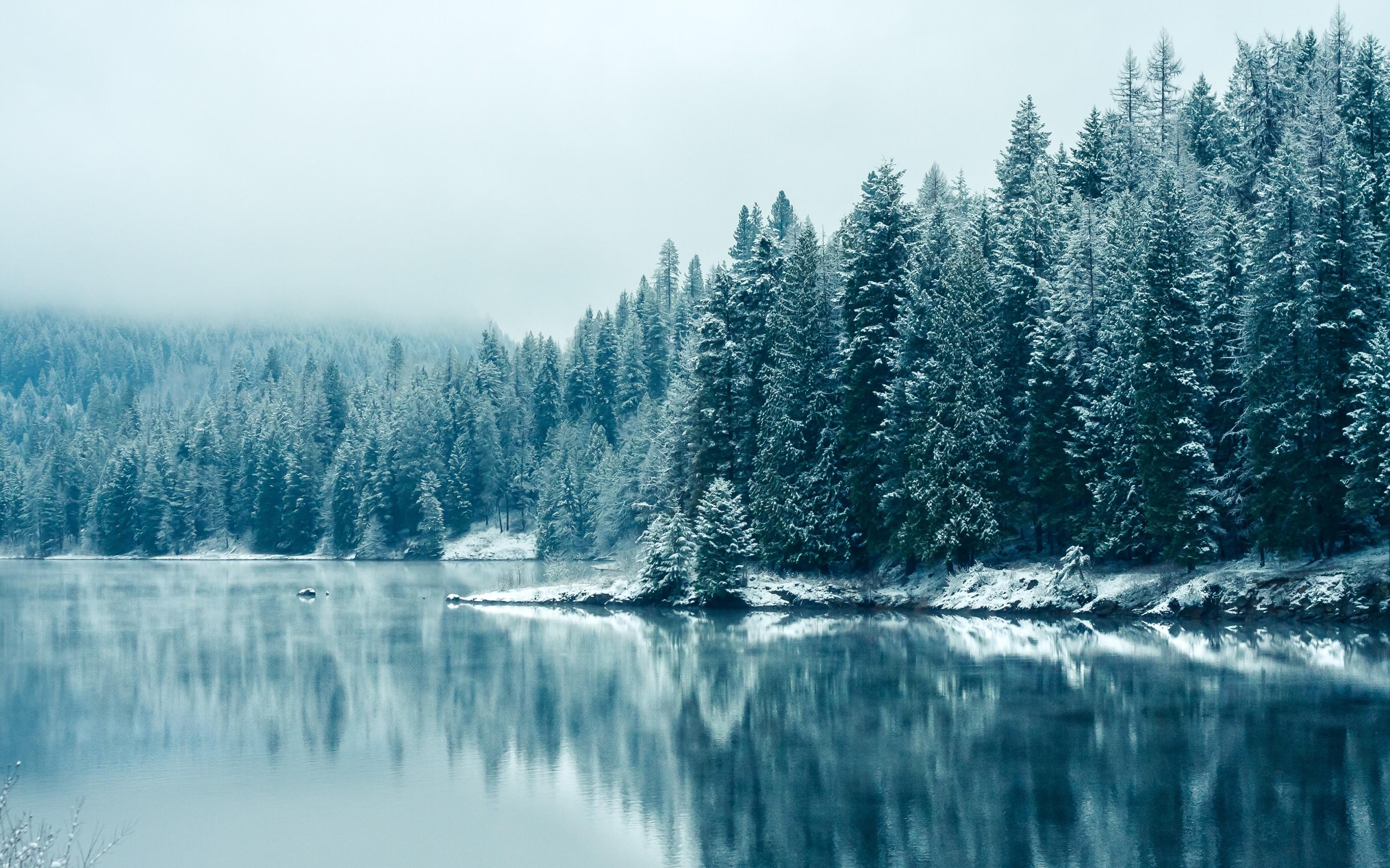 winter desktop background ·①