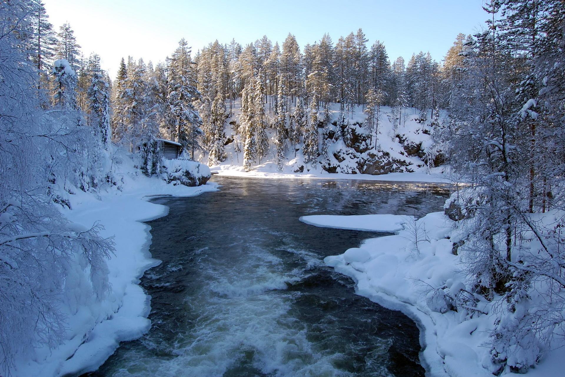 Winter Scene Backgrounds
