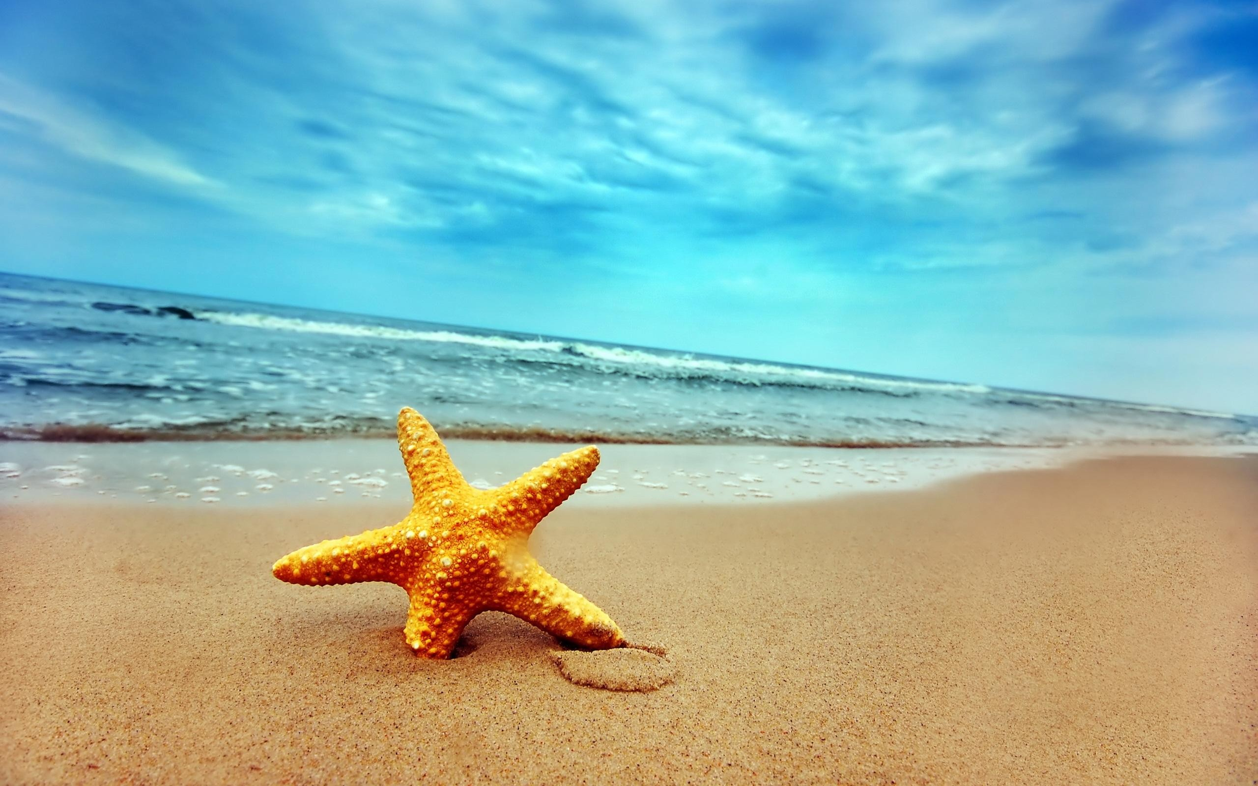 35 Desktop Backgrounds Beach Download Free Beautiful Full Hd