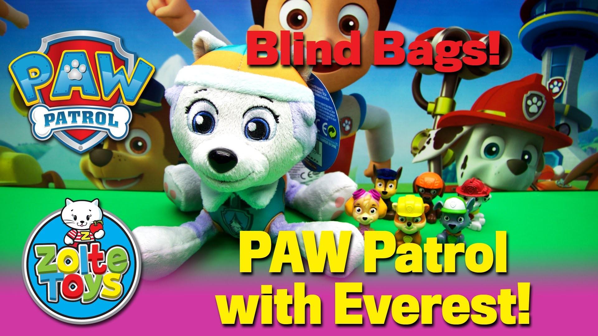 Paw Patrol Background 1 Download Free Wallpapers For Desktop