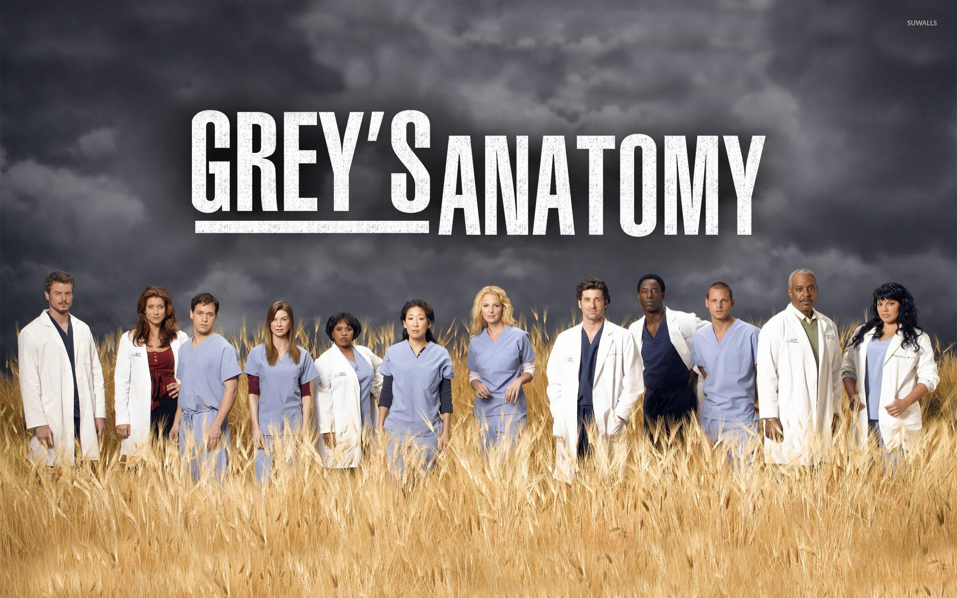 Greys Anatomy Wallpapers ·①