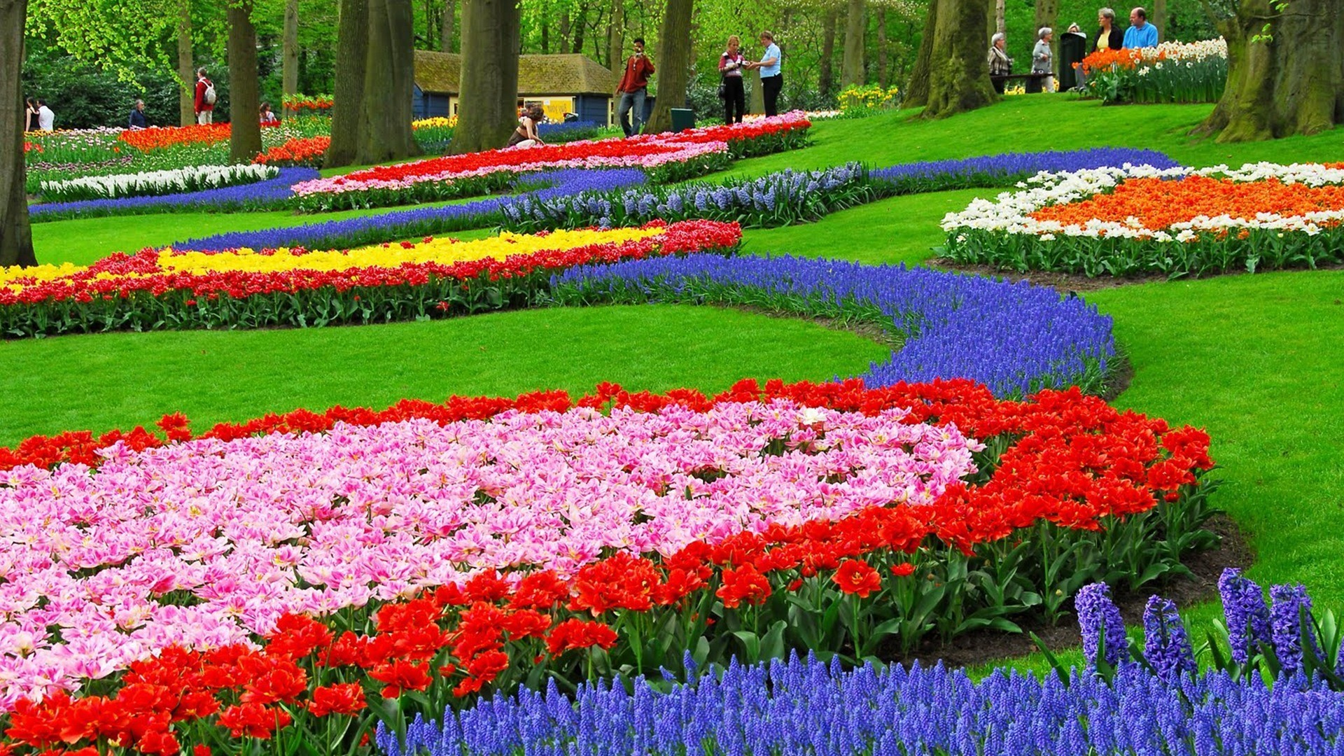 Flower Gardens Wallpapers ·① WallpaperTag