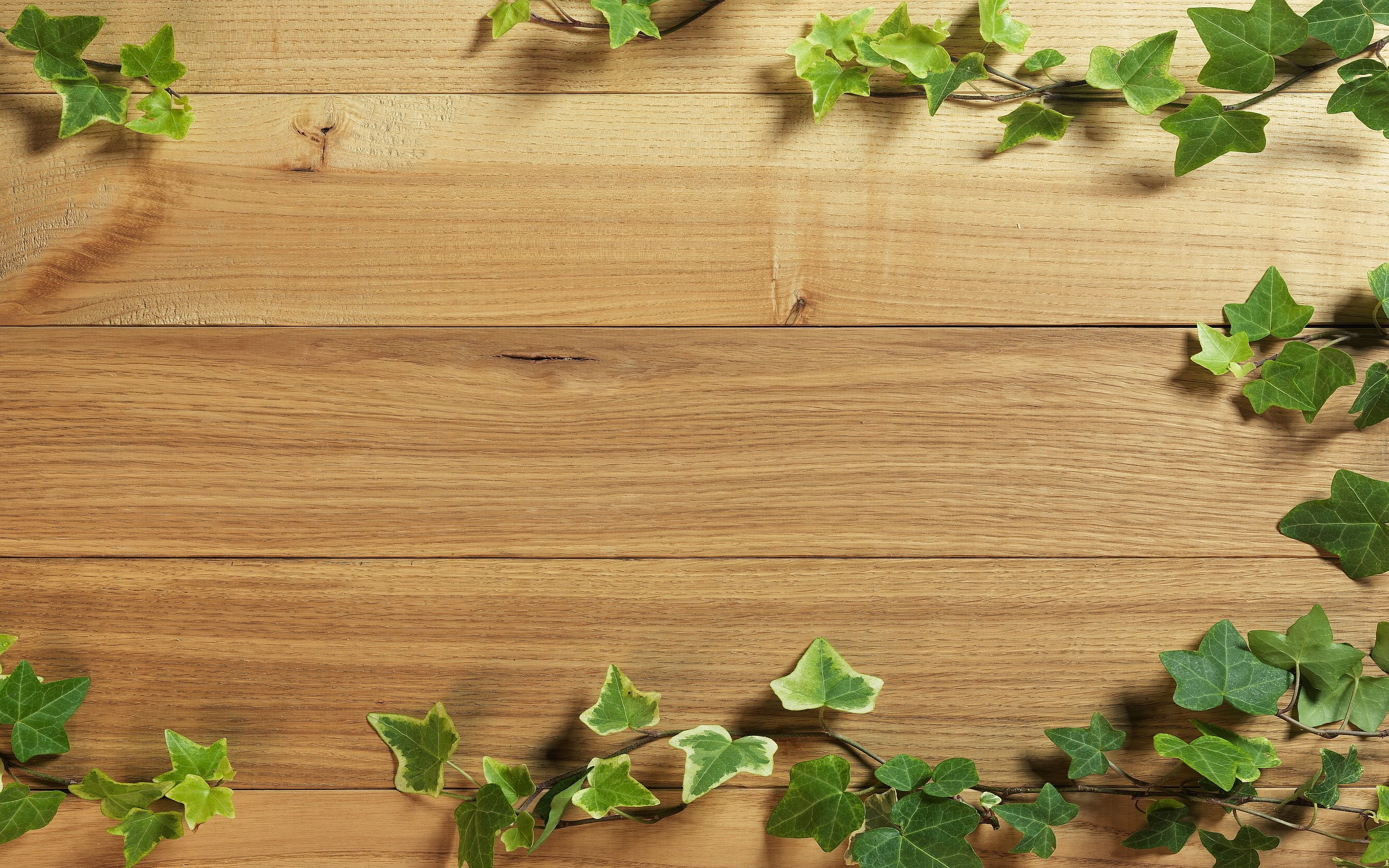 Wood background image ·① Download free wallpapers for ...