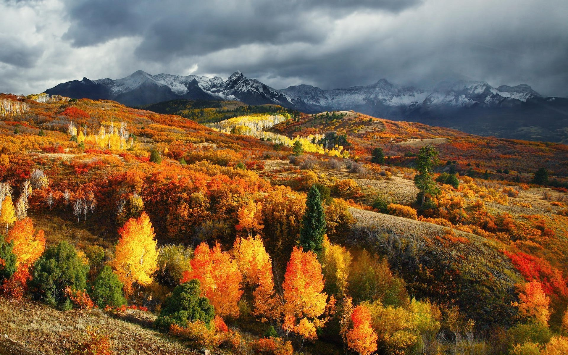 colorful nature wallpapers 183��