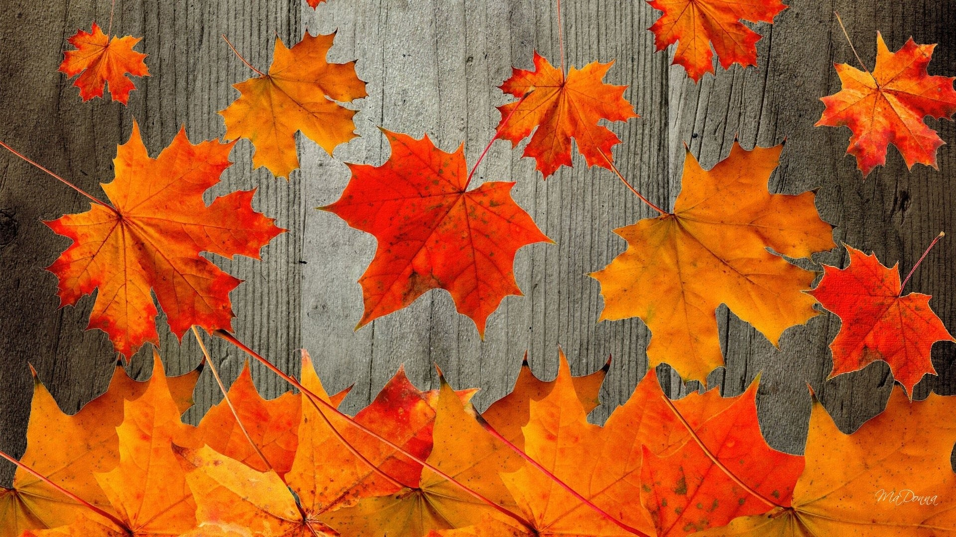 30+ Rustic backgrounds ·① Download free beautiful HD ...