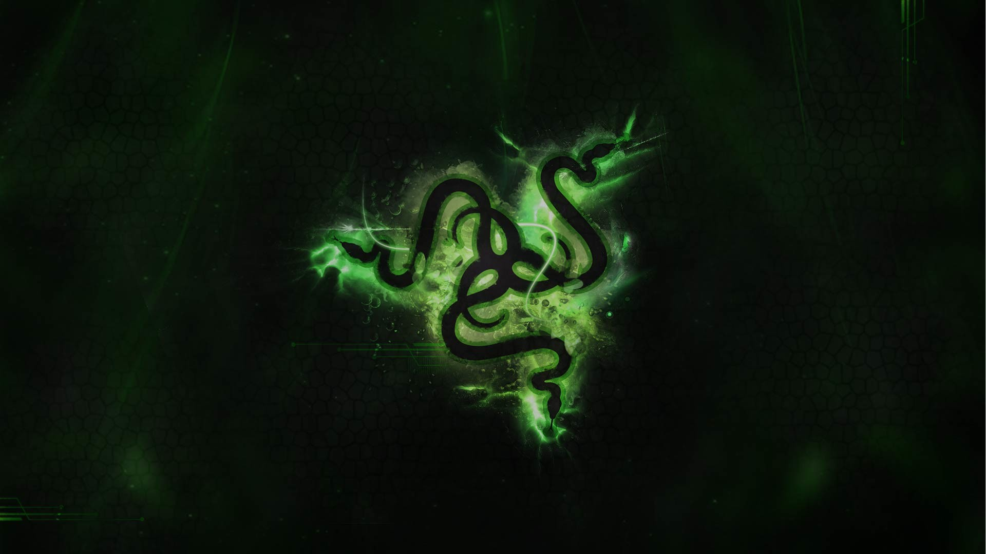Razer Logo Wallpaper 06