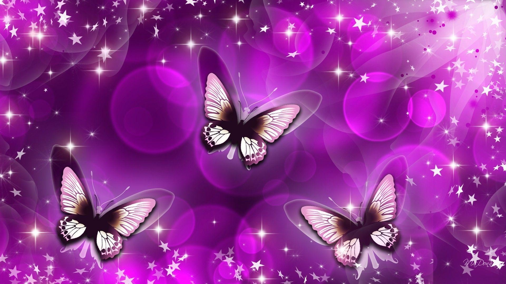 Simple Wallpaper Home Screen Butterfly - 630093-purple-butterfly-wallpaper-1920x1080-screen  Best Photo Reference_289864.jpg