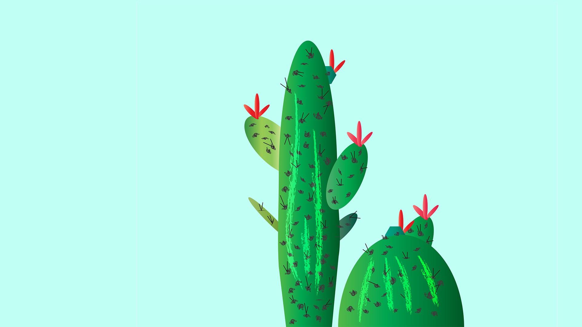 Cactus Wallpaper 183 ① Download Free Beautiful Wallpapers For