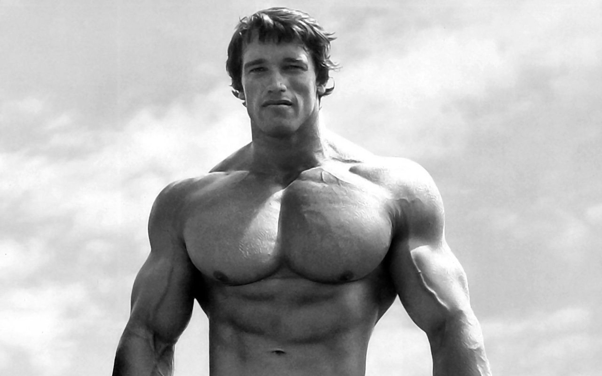 Arnold Schwarzenegger Bodybuilding Wallpapers Posters and ...