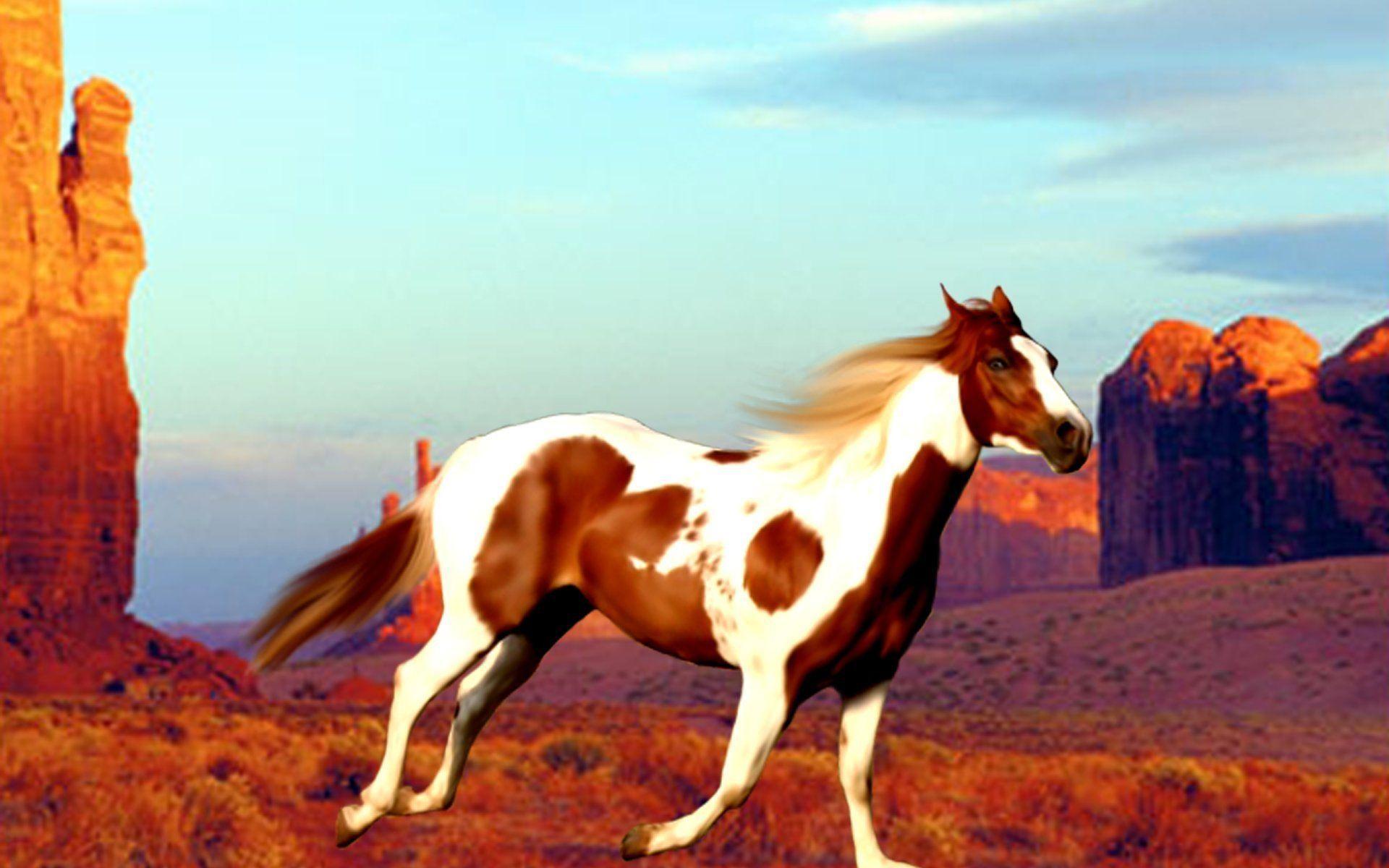 Pretty Western Wallpaper Unique Western Horse Wallpaper For Mac