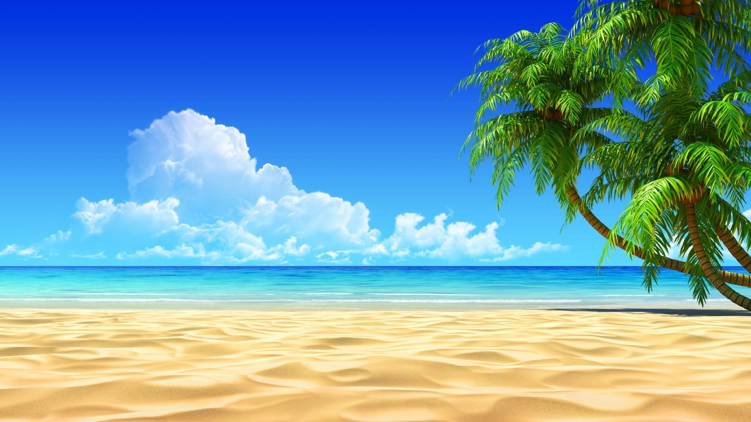 2560x1440 Monster Energy Desktop Wallpaper 1024A 768 High Definition Download Beautiful Tropical