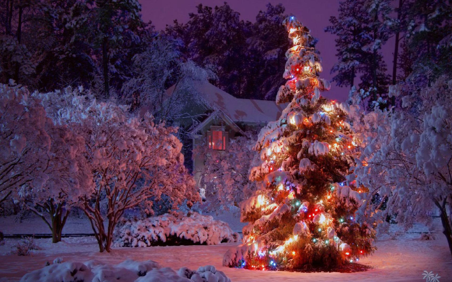 Christmas winter scenes wallpaper - Christmas village wallpaper widescreen ...