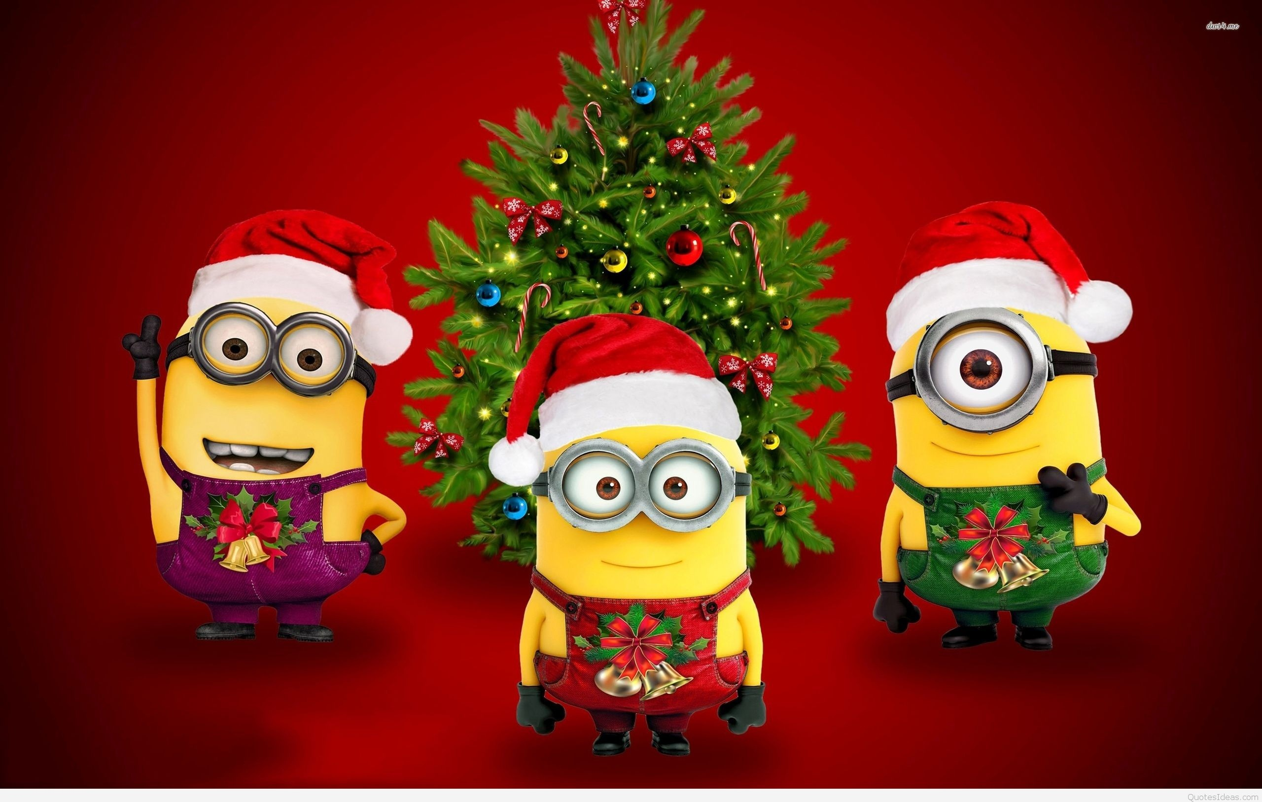 Funny Christmas Wallpaper ·① WallpaperTag