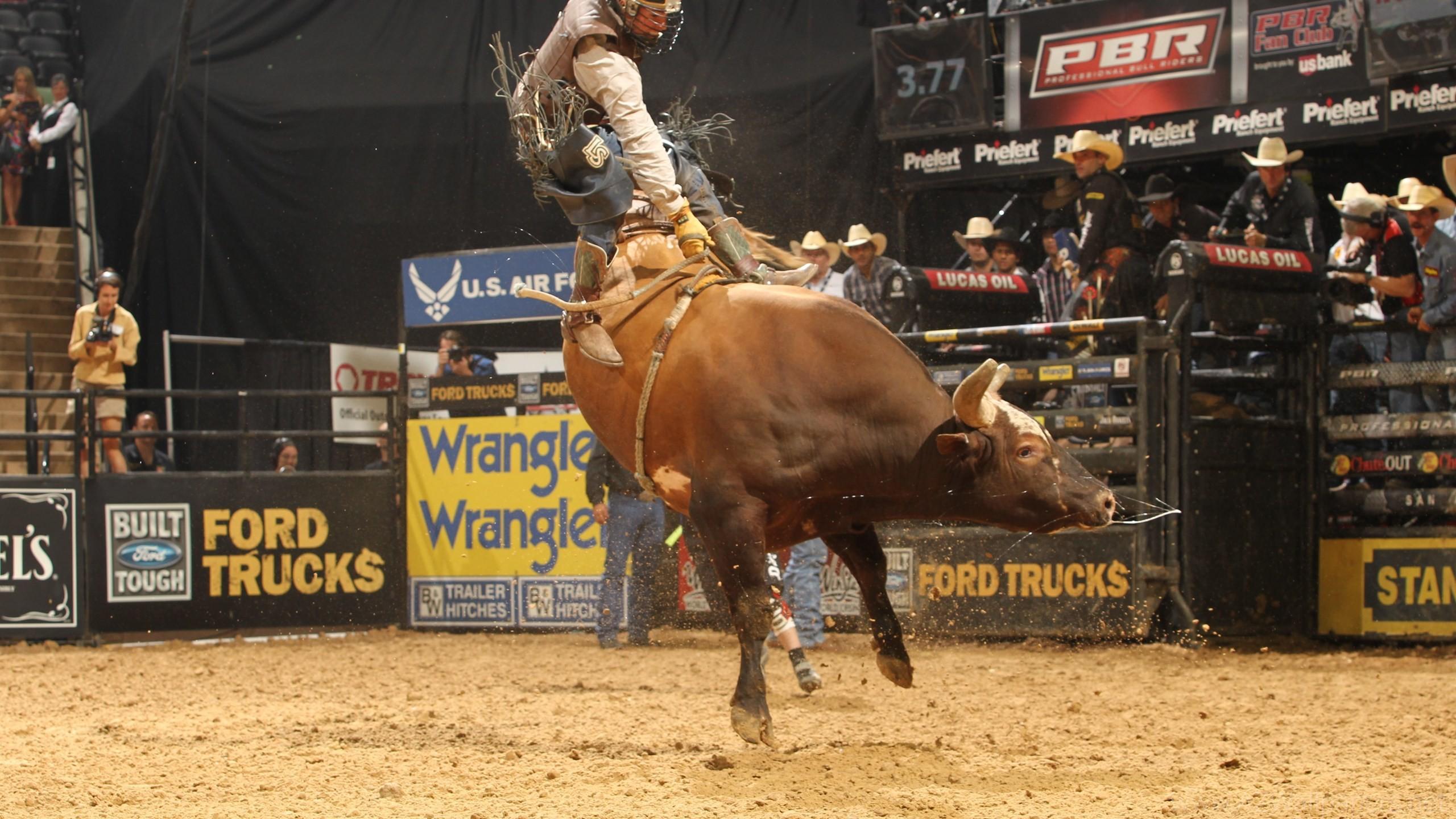 Bull Riding Wallpapers 183 ① Wallpapertag