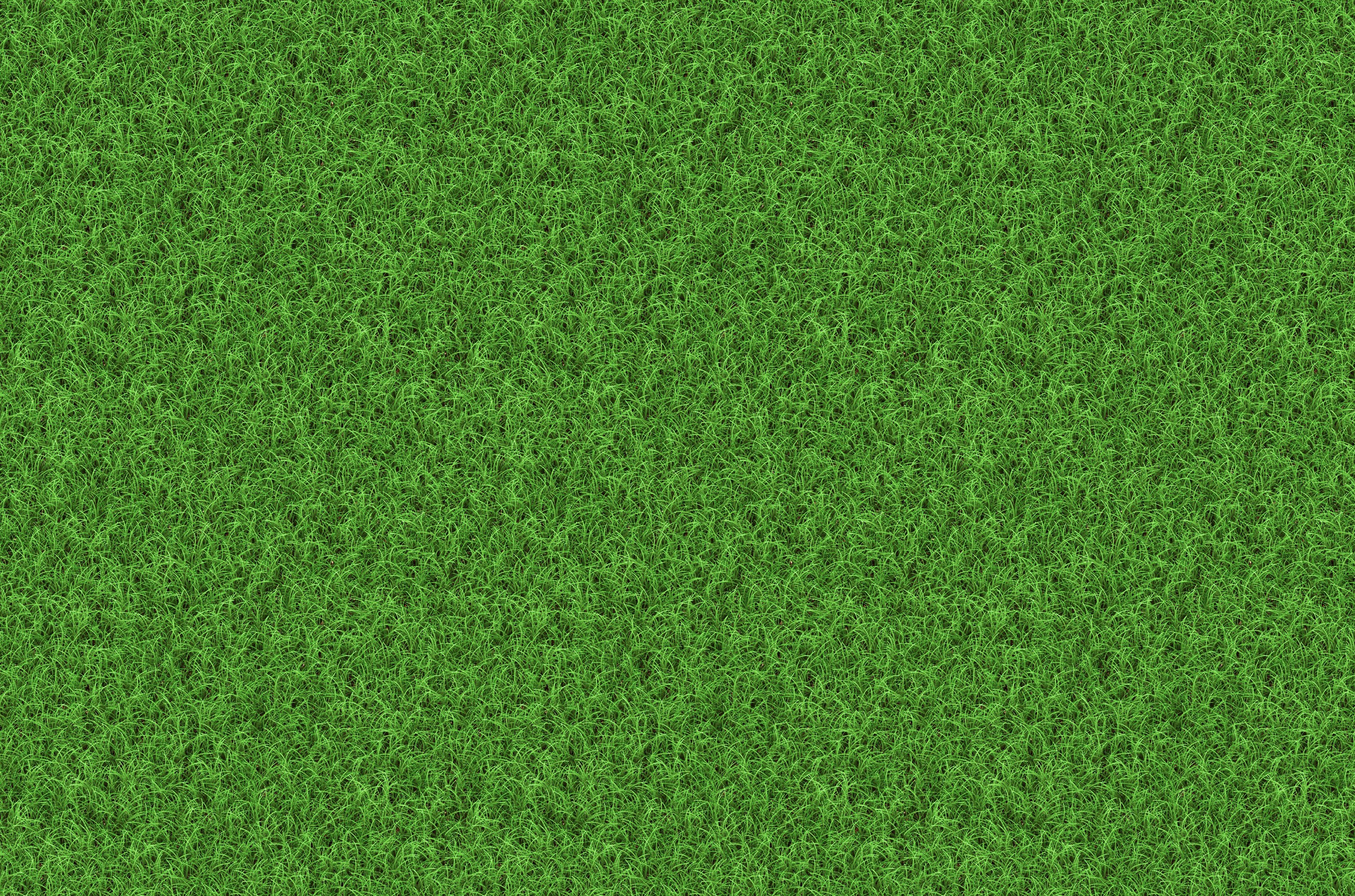 grass background hd green download free grass background 1920x1200 grass download backgrounds for desktop and