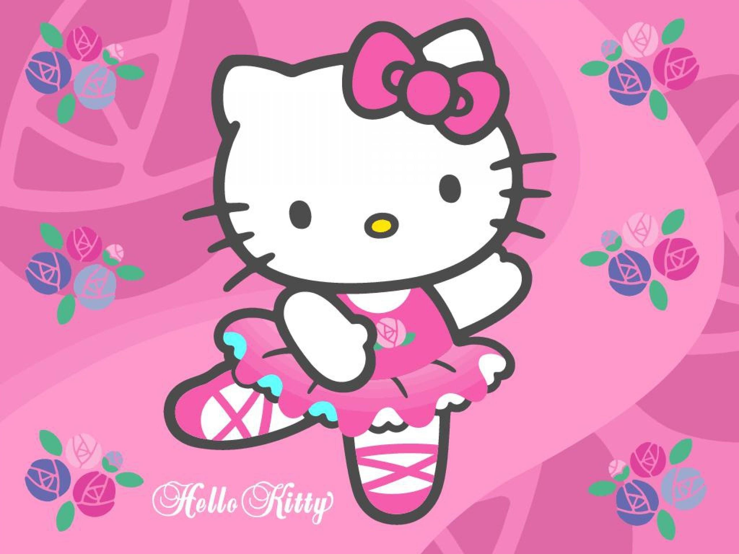 2560x1920 Hello Kitty Zebra Wallpaper Free