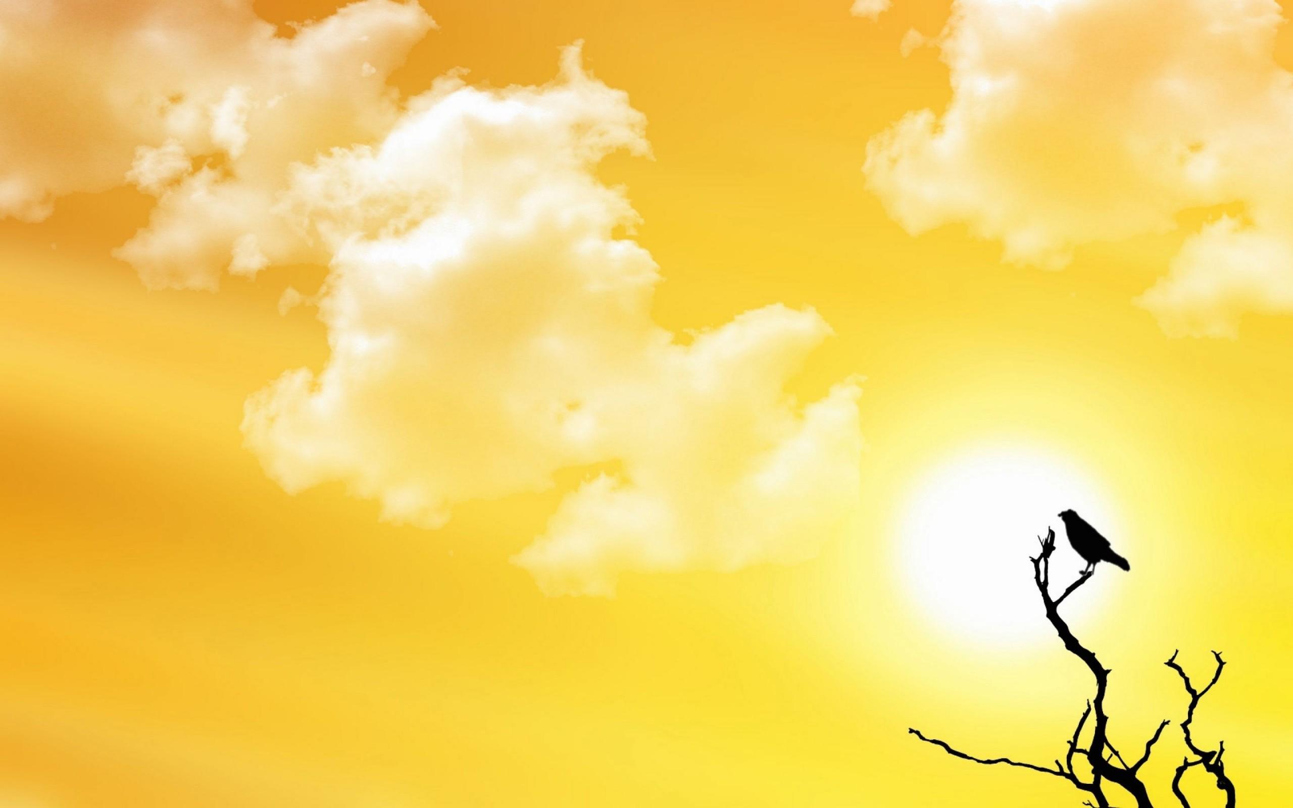 sunny background  u00b7 u2460 download free awesome high resolution