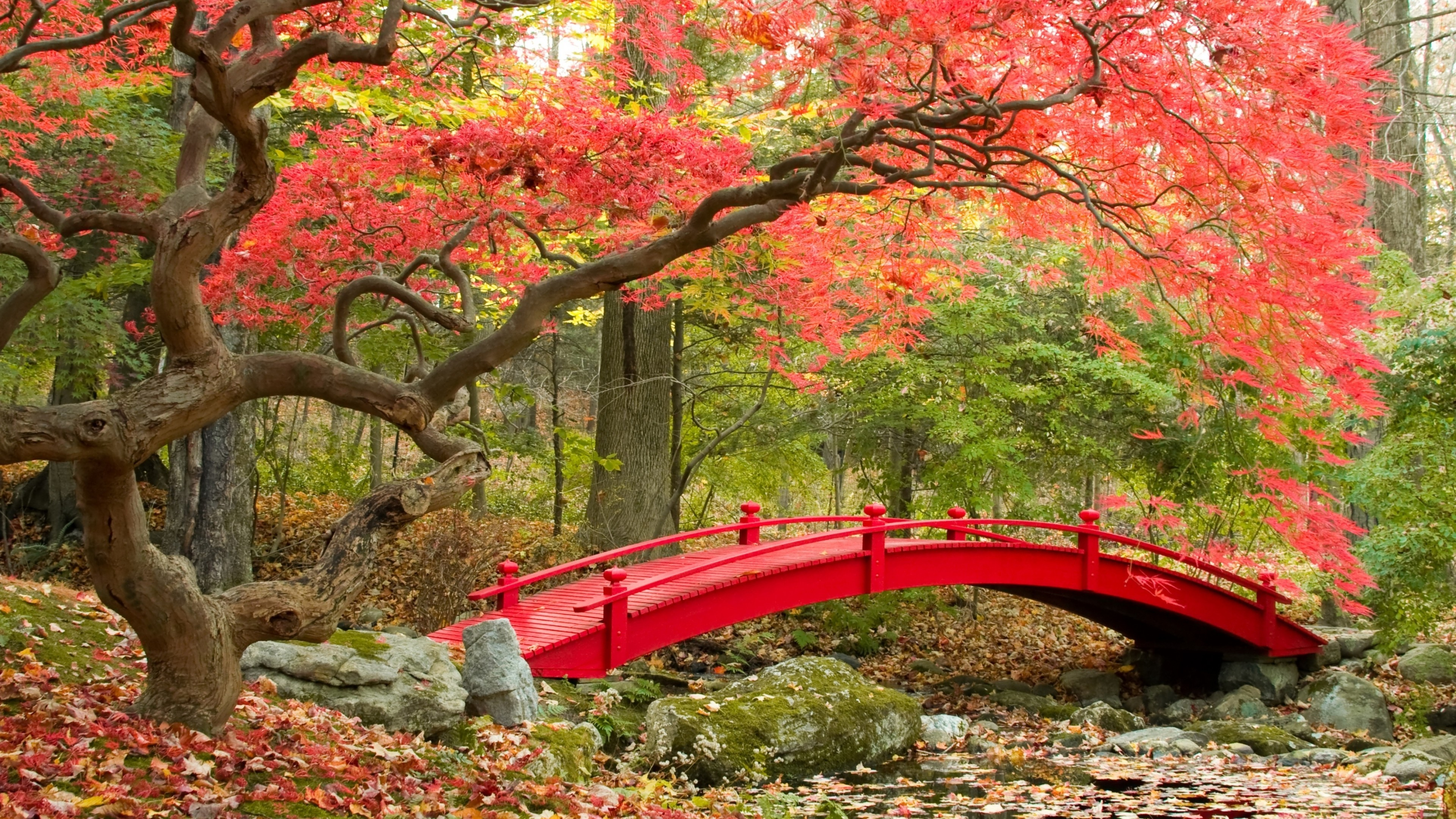 Japanese garden desktop wallpaper wallpapertag - Nature japan wallpaper ...
