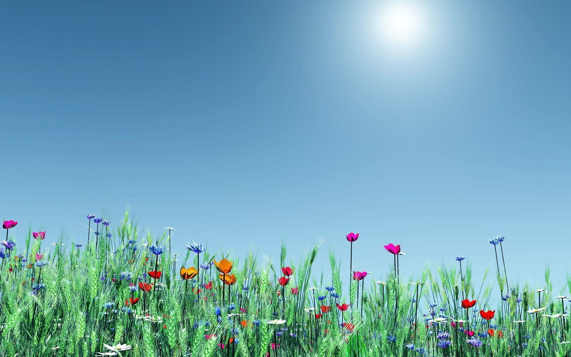 spring flowers background desktop ·①