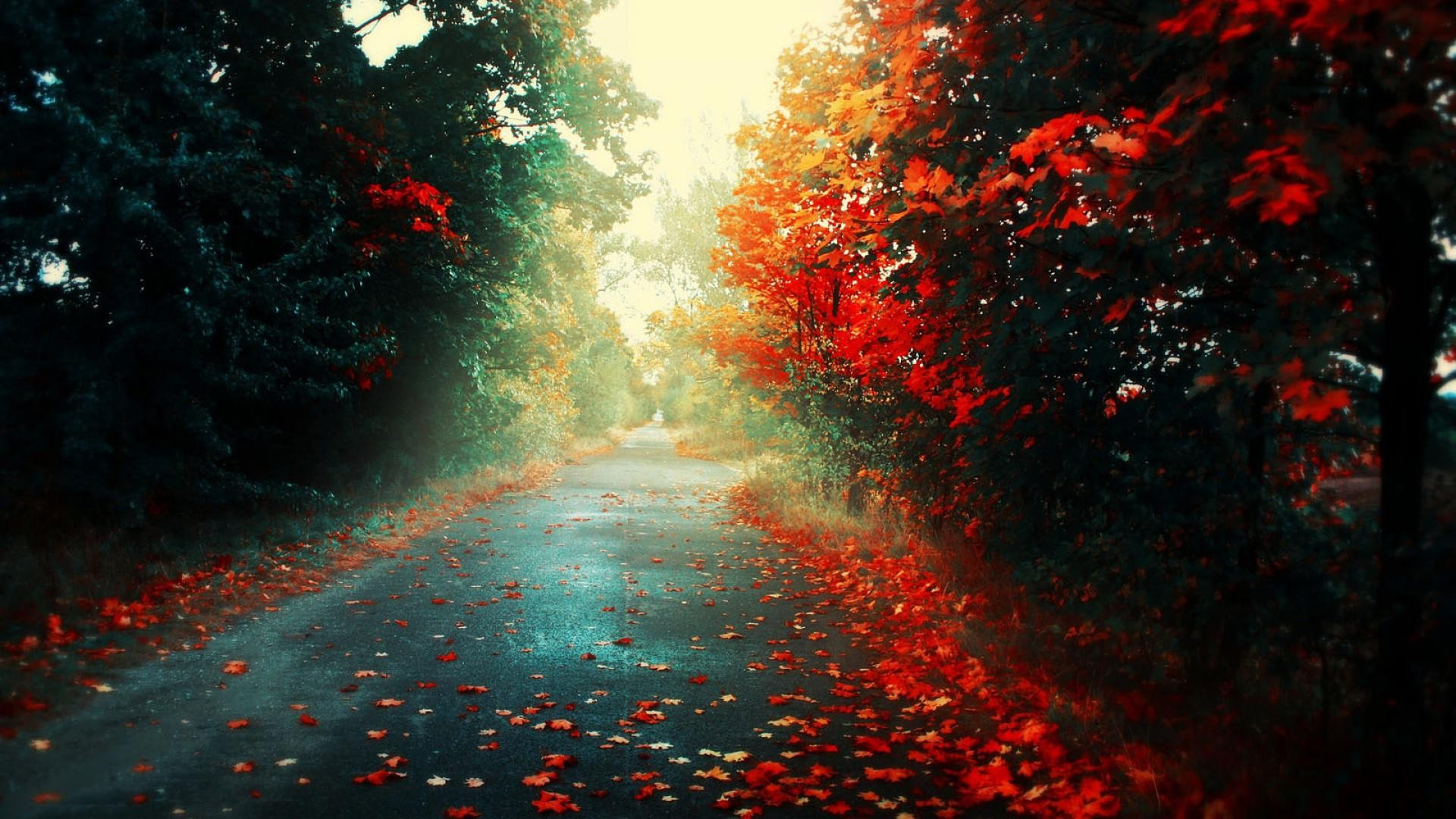 tags 1080p wallpapers 2013 - photo #38