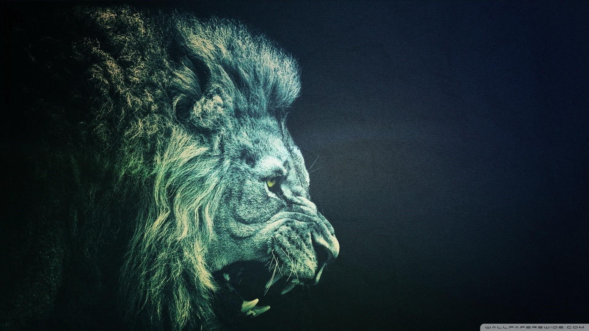 Lion Pictures Wallpaper Wallpapertag